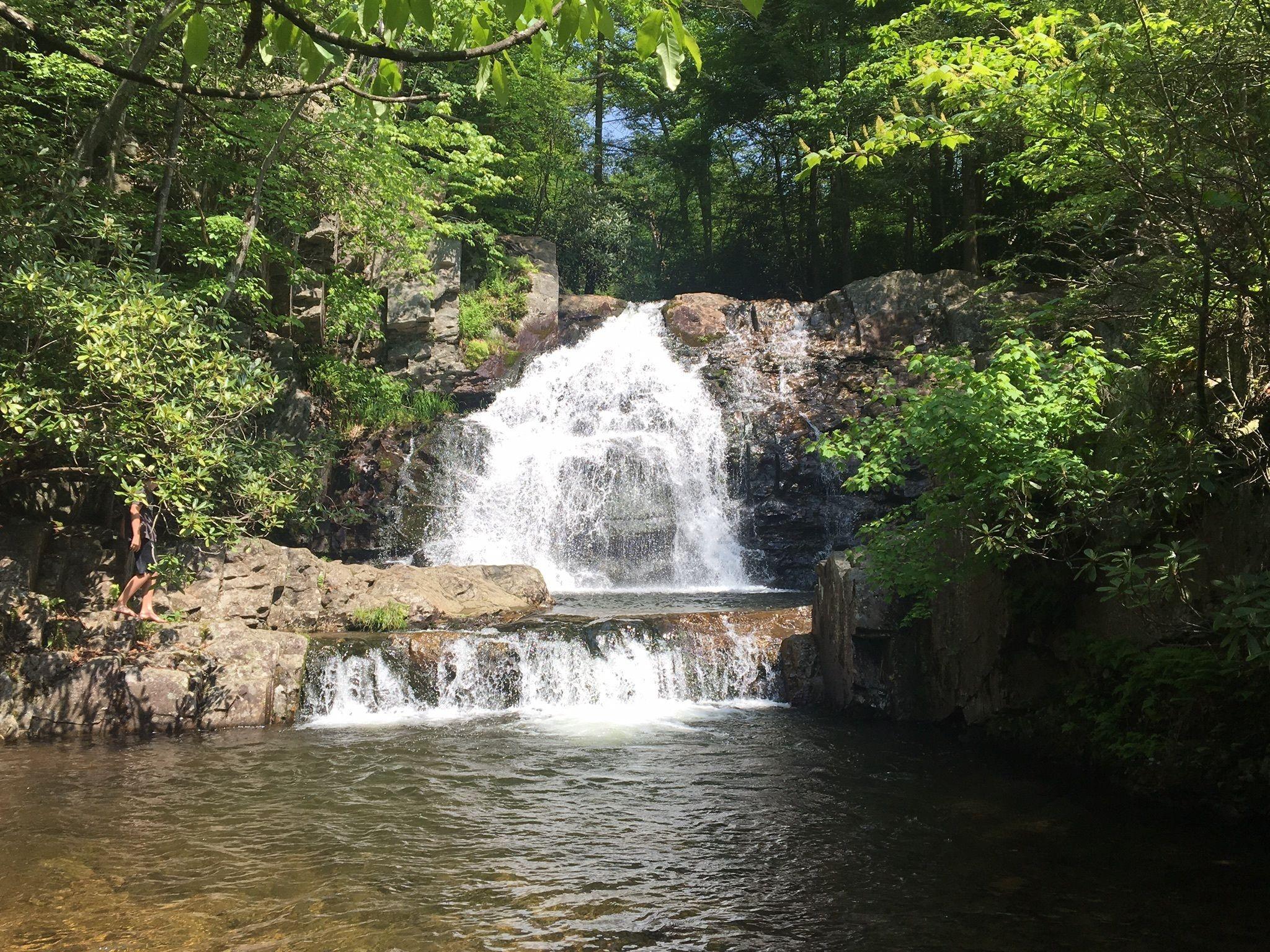Hawk Falls Trail - Pennsylvania | AllTrails