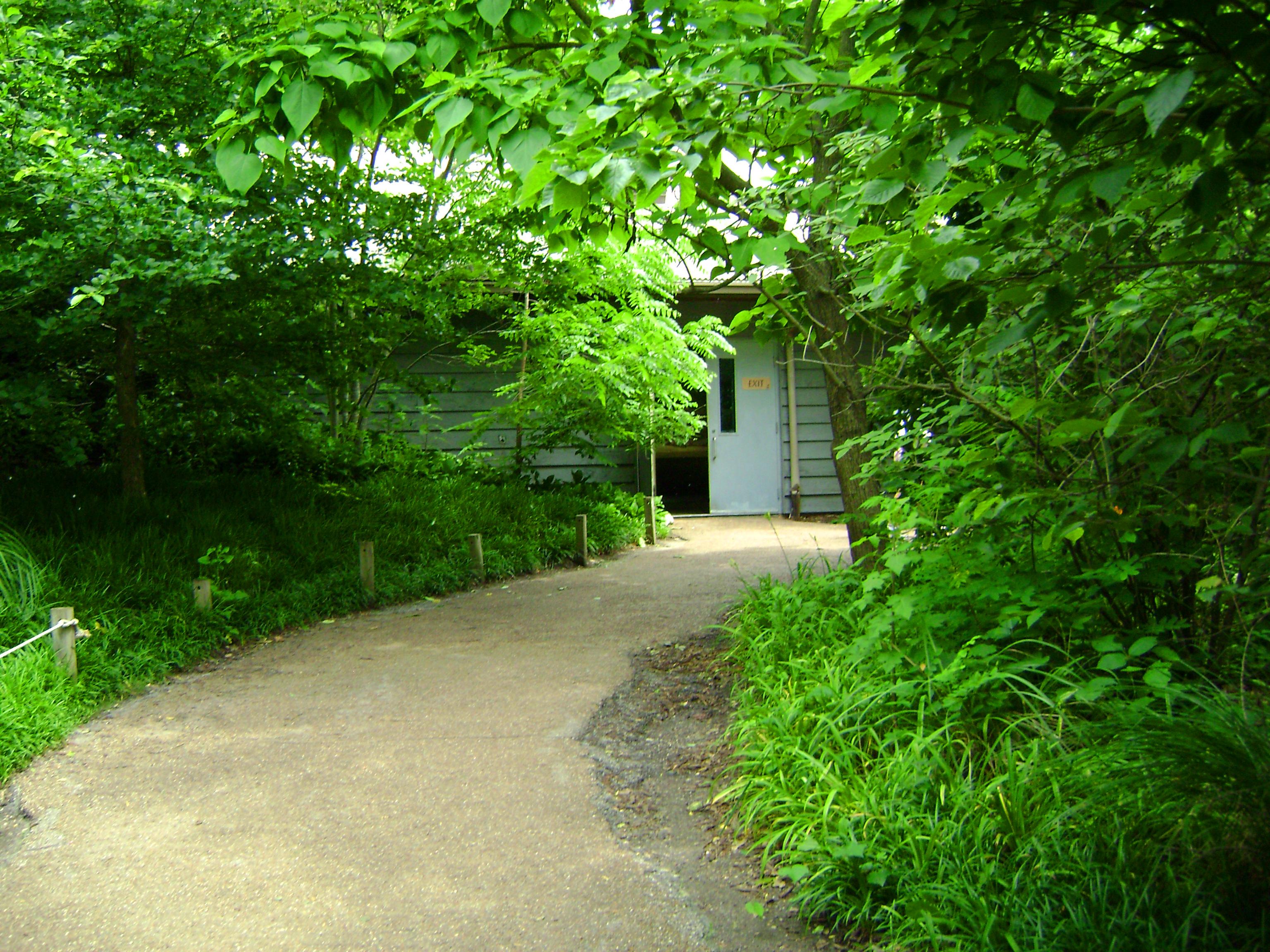 Hidden Path, Green, Hut, Landscape, Nature, HQ Photo