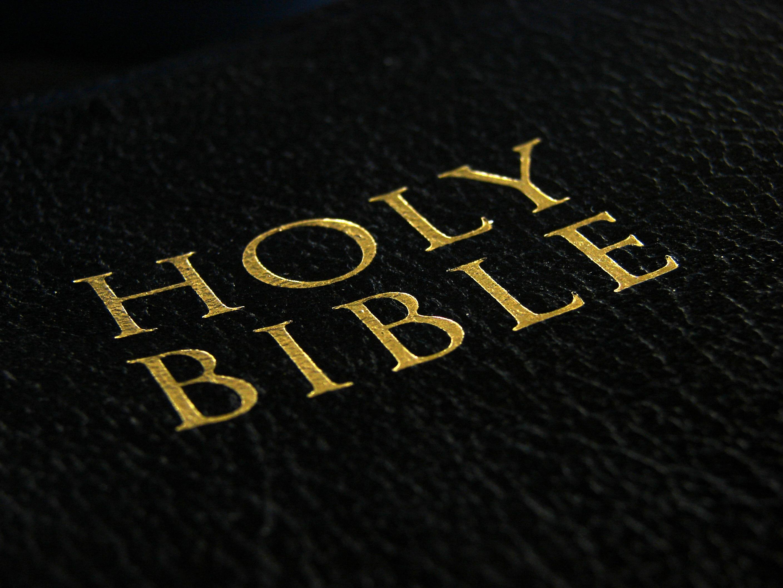 Holy Bible, Bible, Black, Book, Gold, HQ Photo