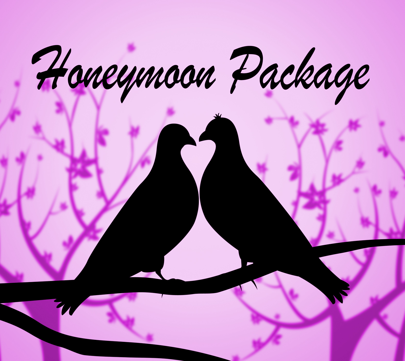 Honeymoon package shows all inclusive and destinations photo