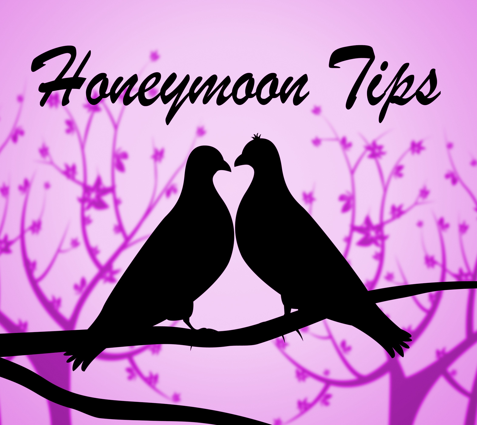 Honeymoon Tips Means Vacational Destinations And Guidance, Advice, Pointers, Vacationing, Vacational, HQ Photo