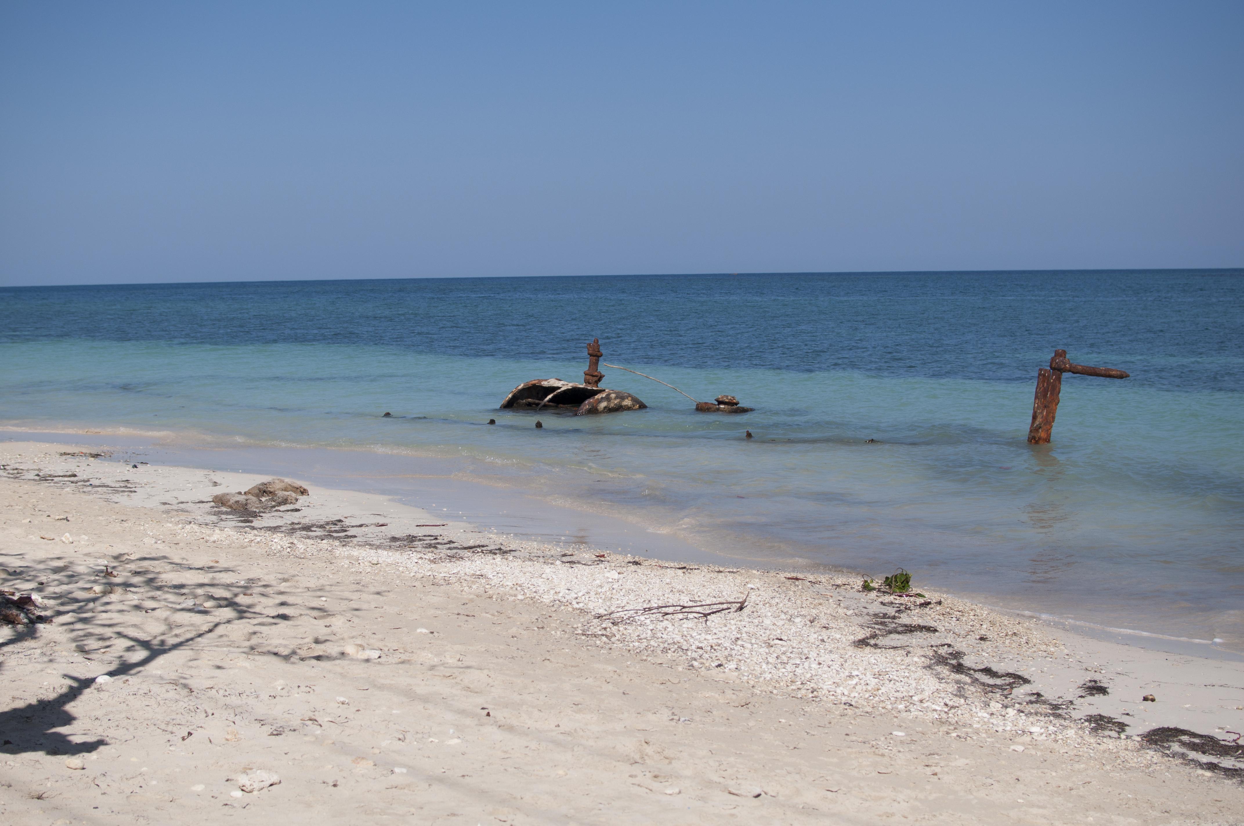 Hopewell beach photo