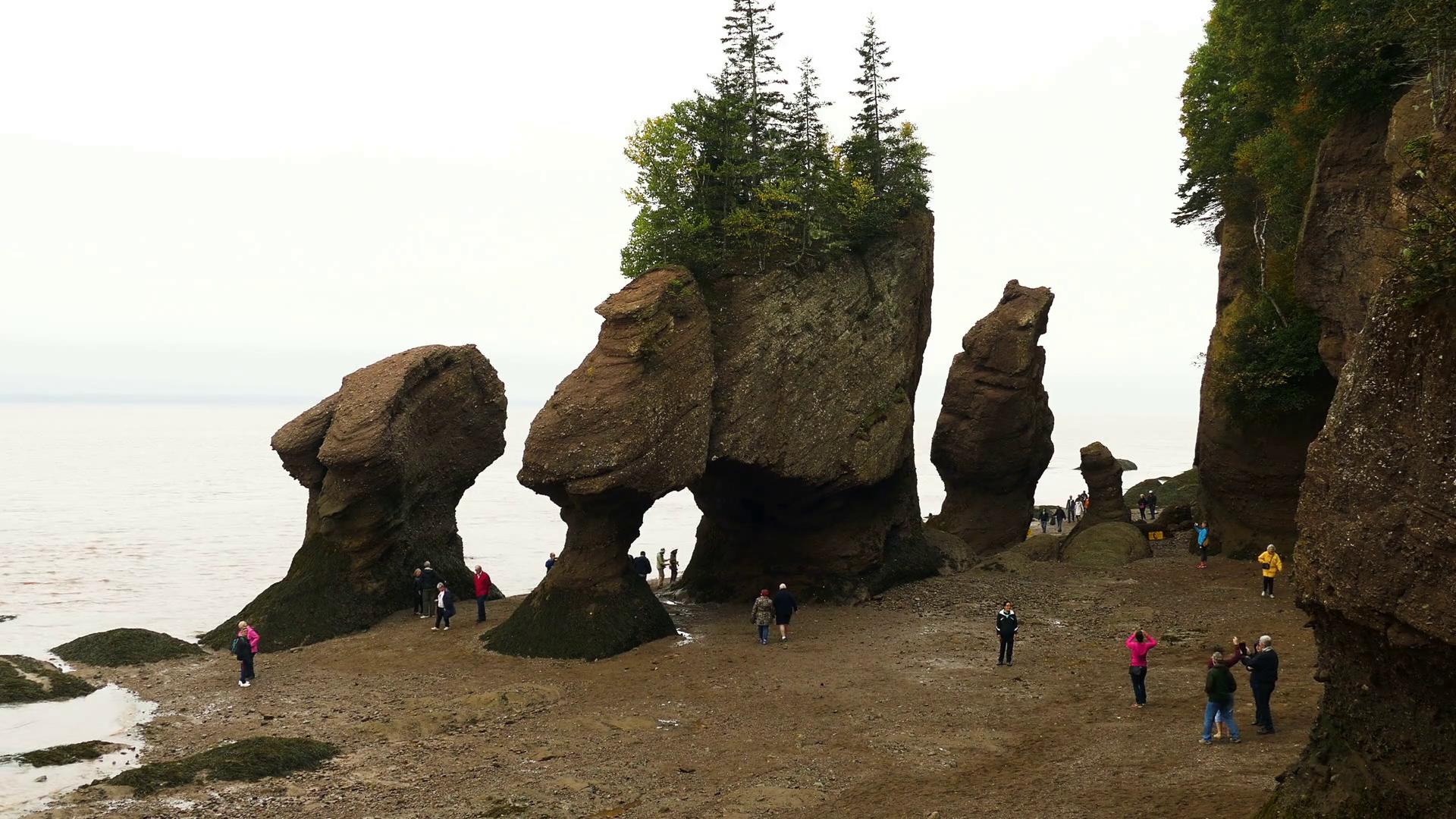 Hopewell Rocks, Hopewell Cape, New Brunswick, Canada Stock Video ...