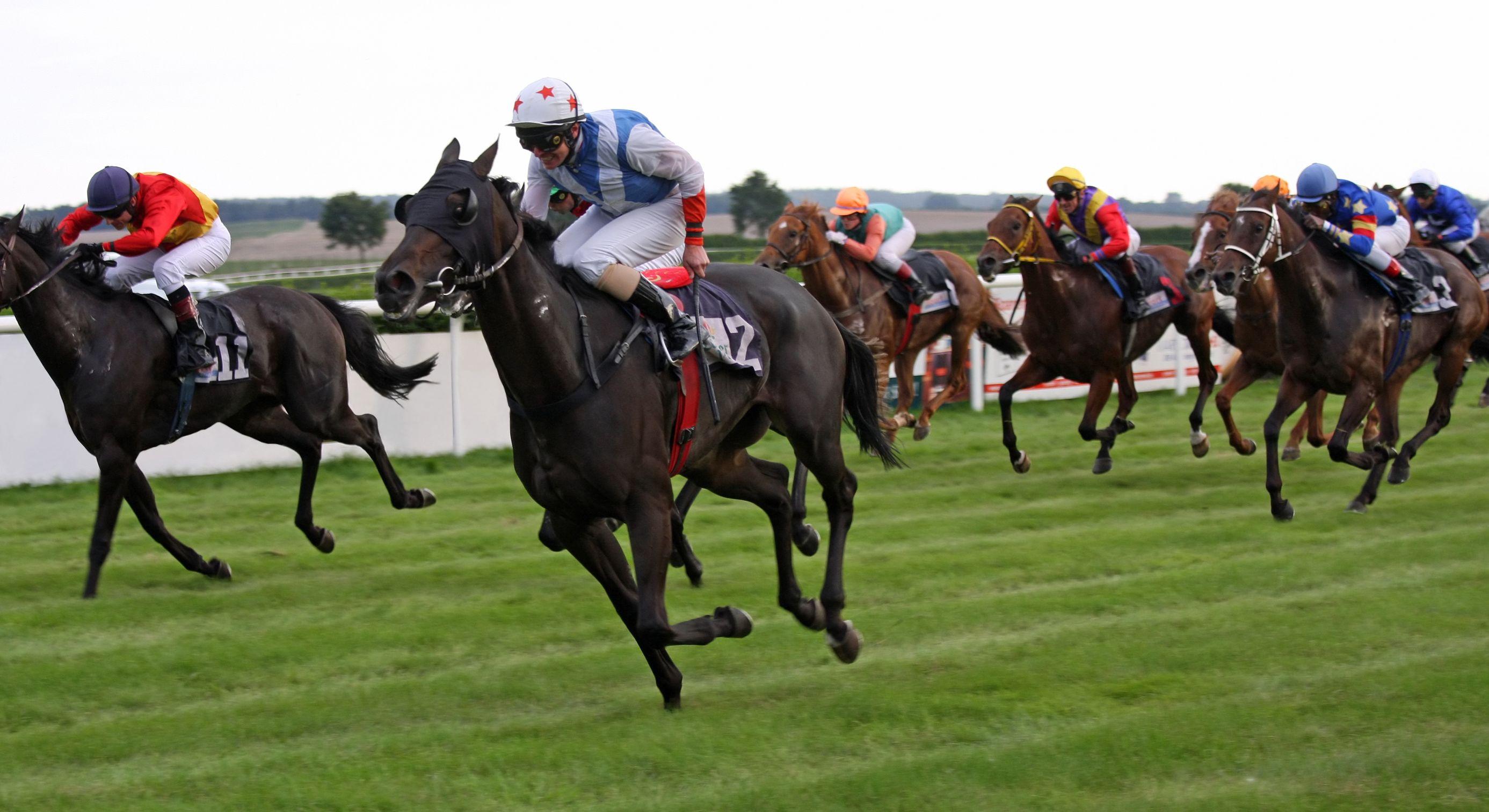 Korean Horse Racing Exported to Singapore | Be Korea-savvy