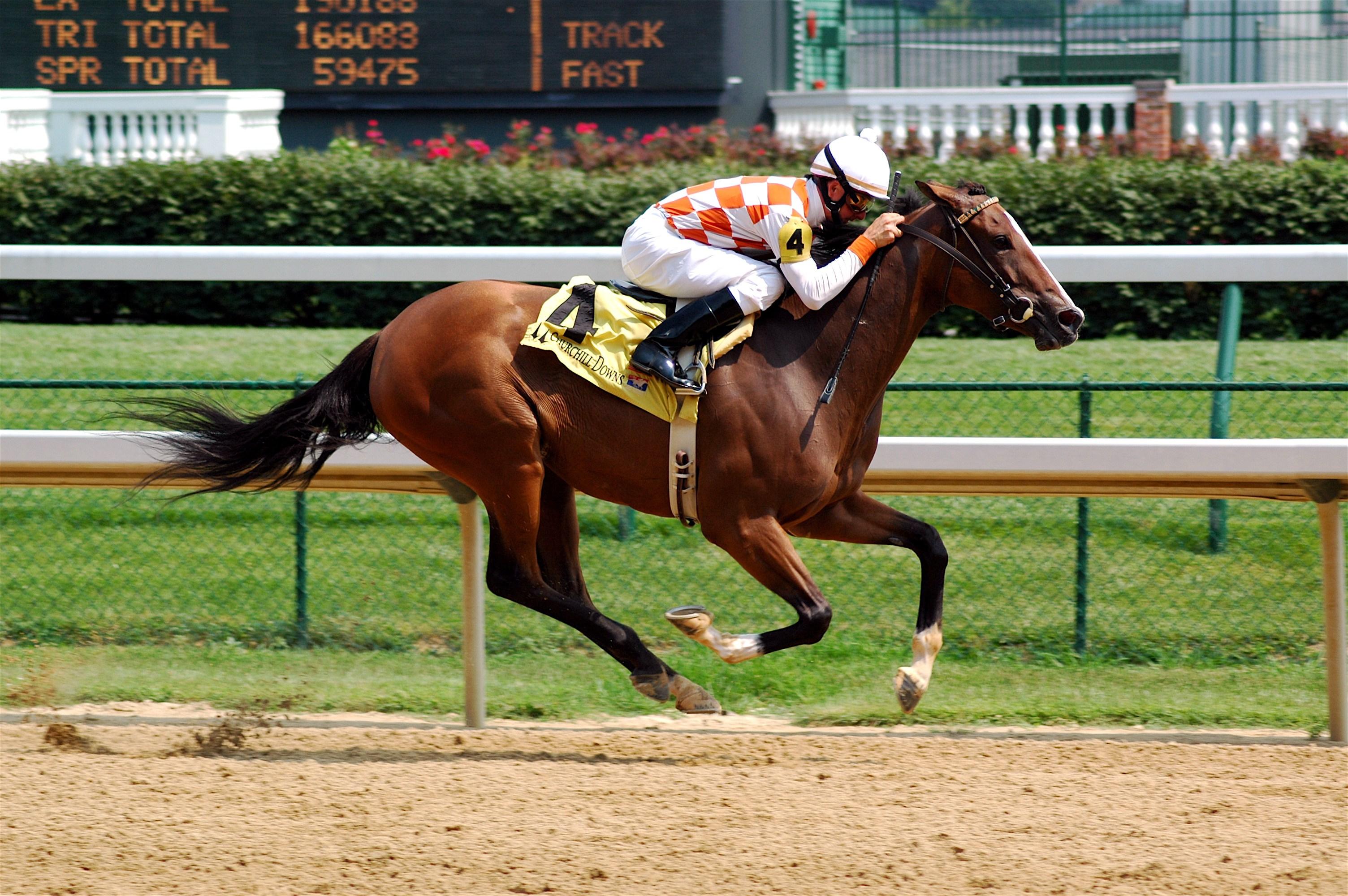 Innovation Friday: Horse racing technology - Lexmark News ...
