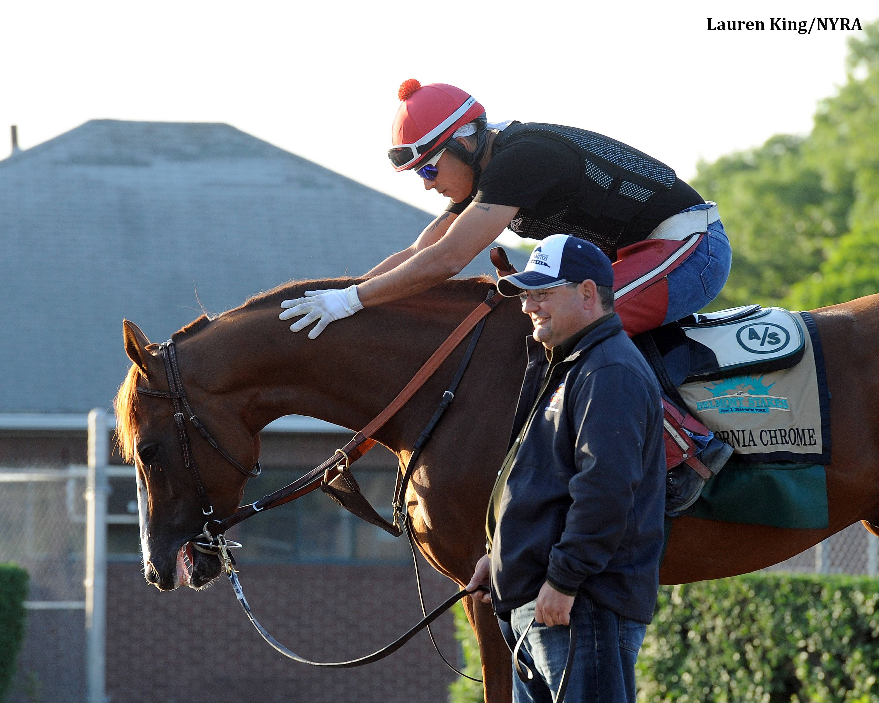 Behind Bars: Chrome Schools in Gate Prior to Friday Gallop - Horse ...