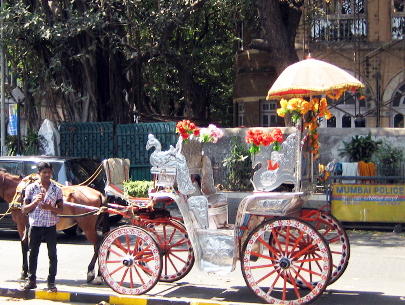 Horse Carriage, Carriage, Cart, Horse, India, HQ Photo