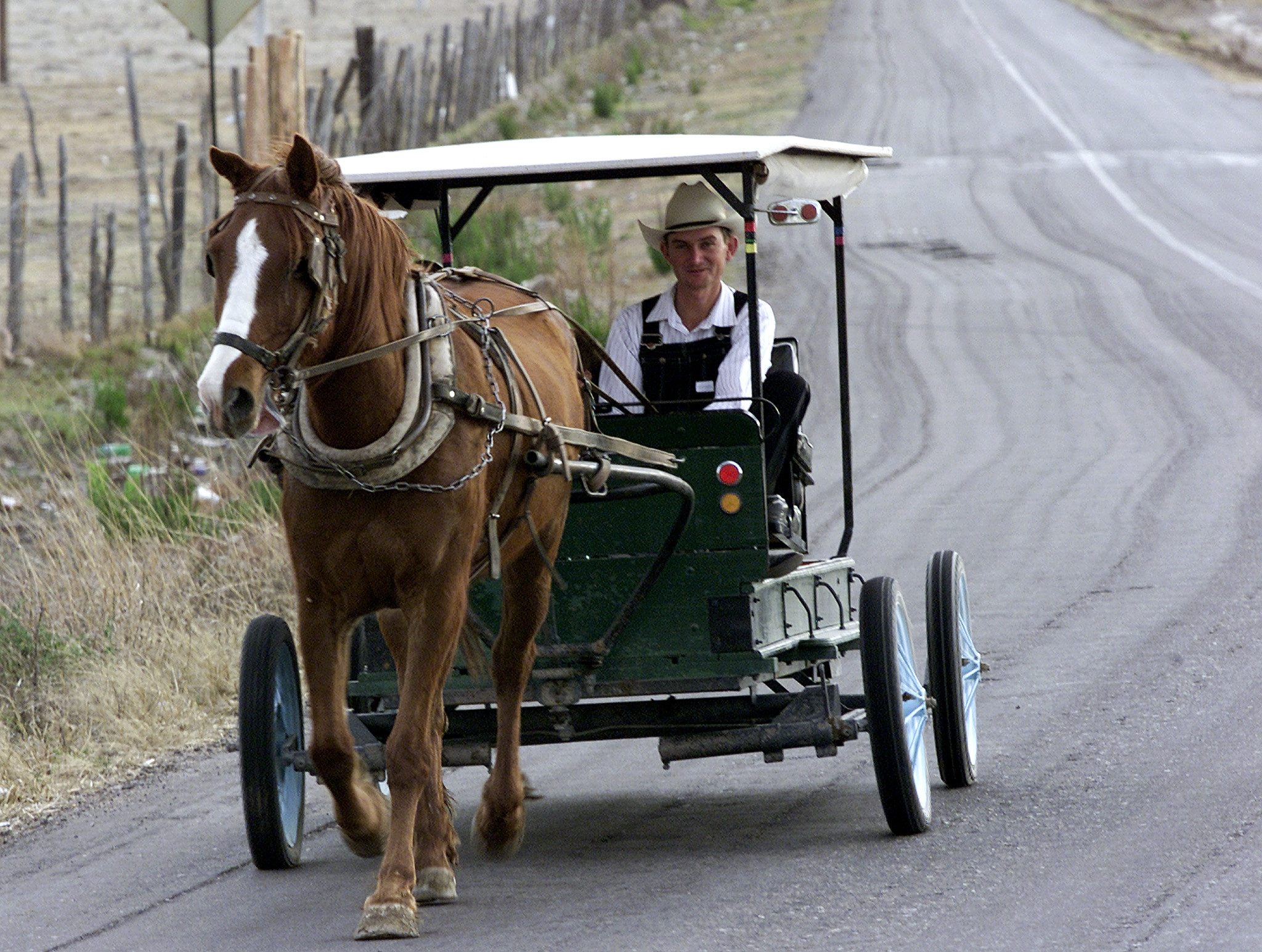 a-mennonite-from-durango-drives-his-horse-drawn-carriage-outside ...