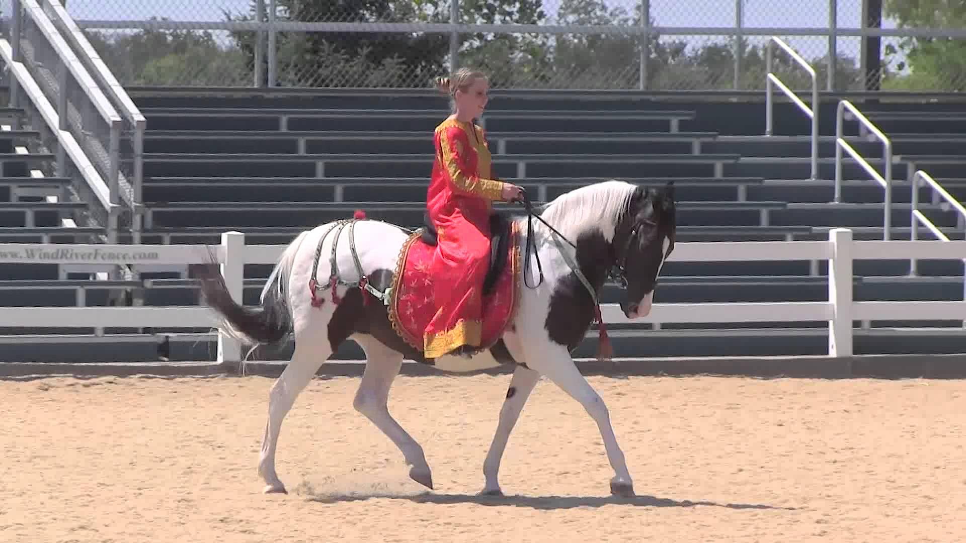 Kentucky Horse Park - Parade of Breeds (Canon VIXIA HF G10) - YouTube