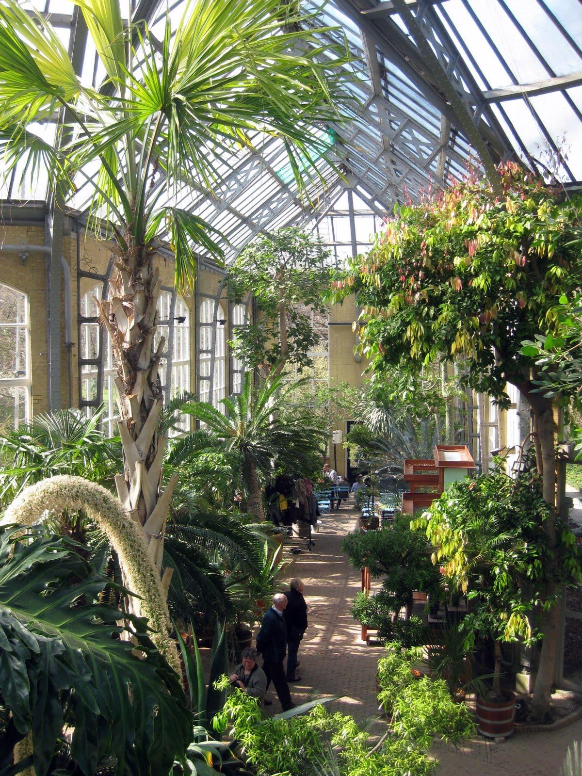Hortus Botanicus | Unquiet Time