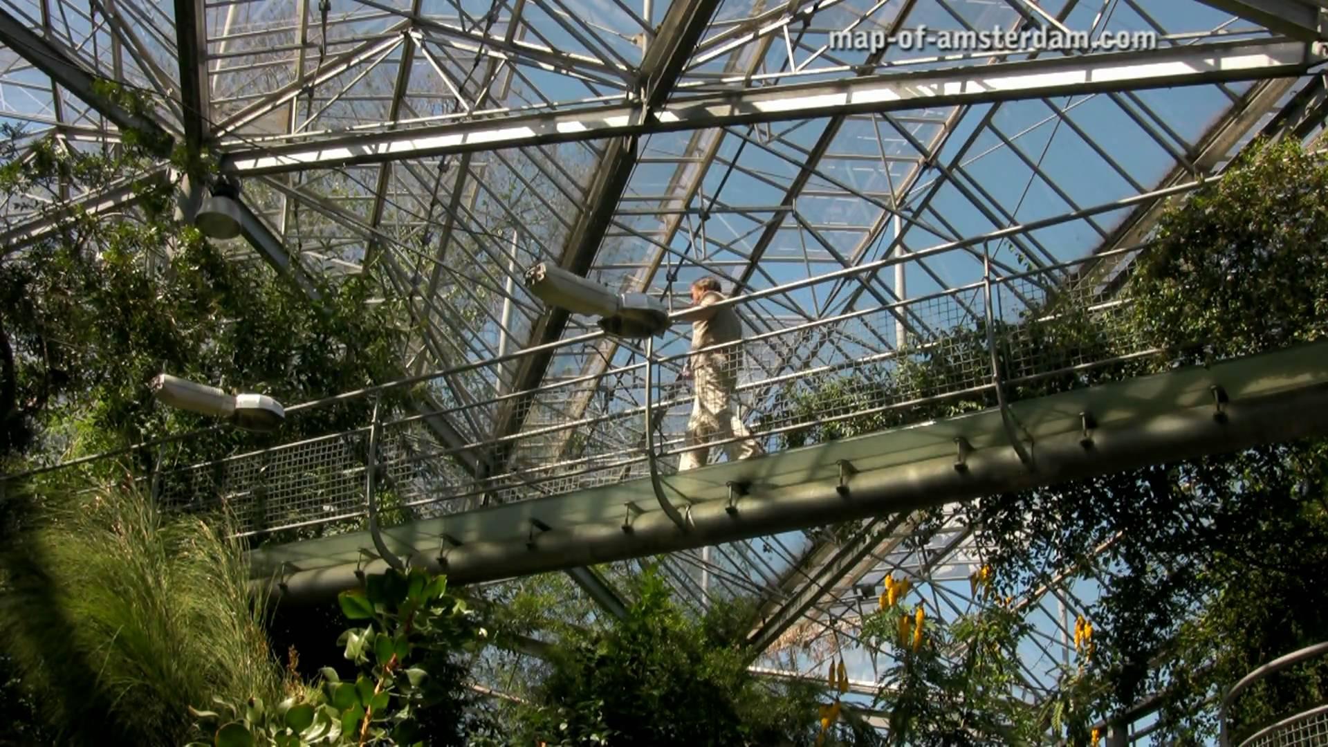 Hortus Botanicus --- Amsterdam - YouTube