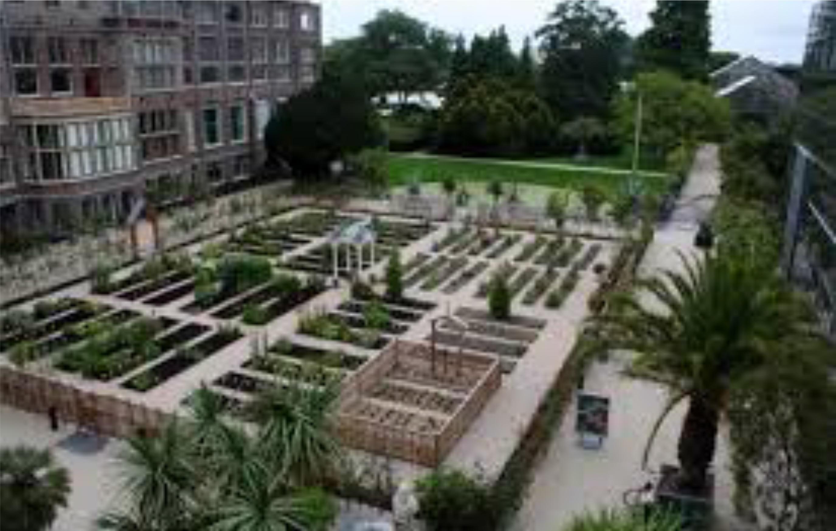 hortusGardens2 | BAGSC News