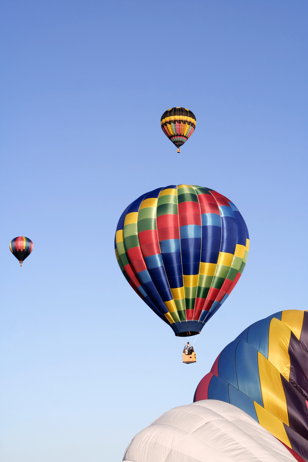 Hot Air Balloons, Air, Photograph, Picture, Pink, HQ Photo