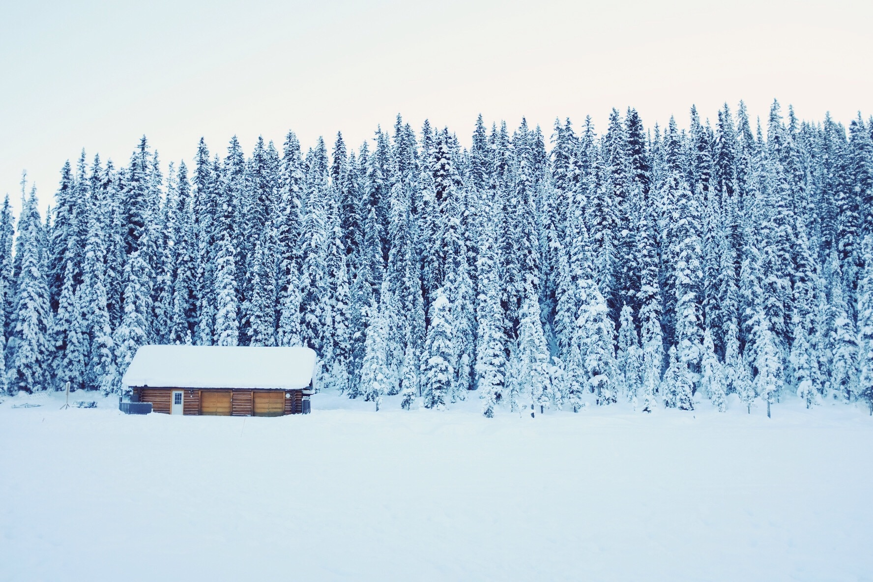 House, Bunch, Forest, Ice, Landscape, HQ Photo