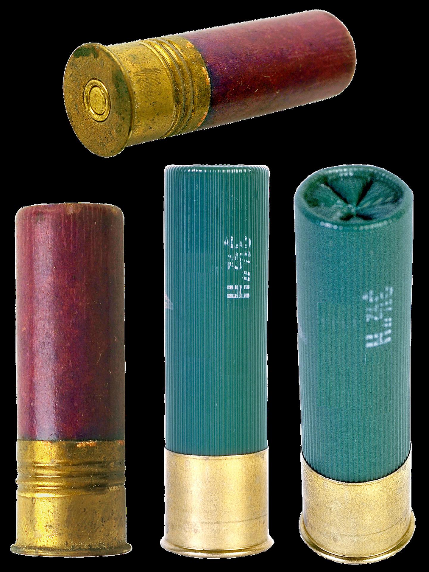 Hunting ammo photo