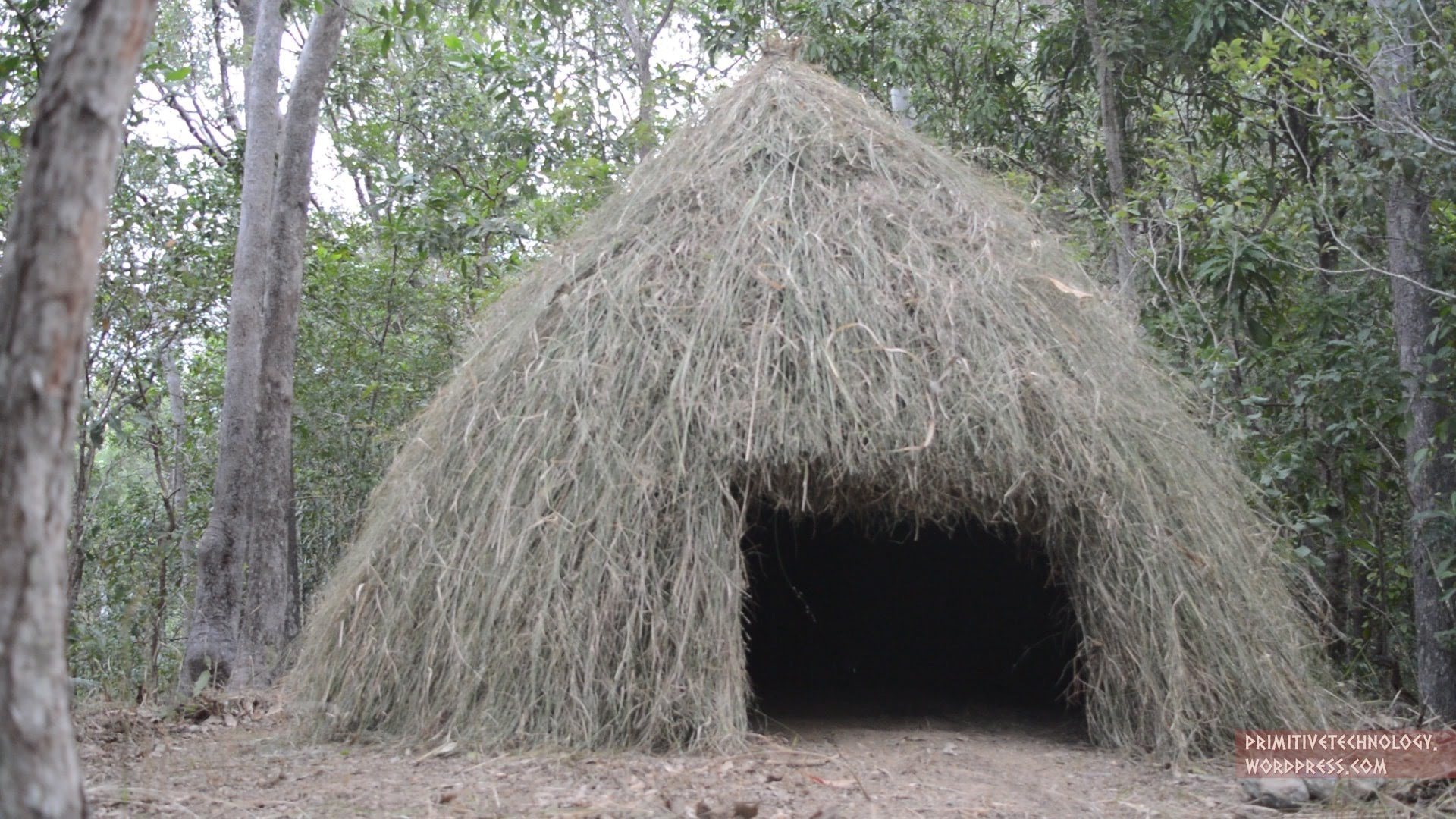 Primitive Technology: Grass hut - YouTube