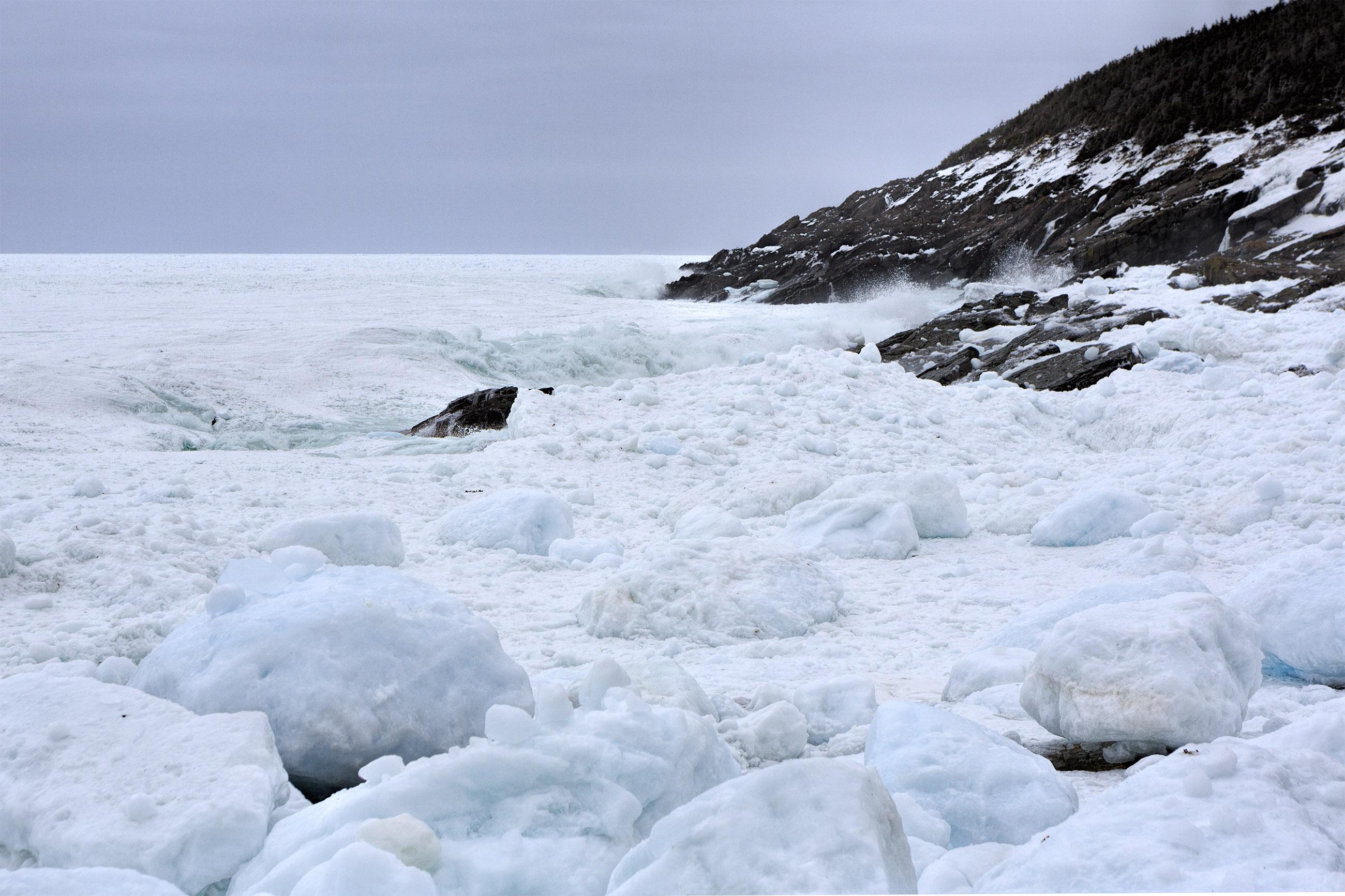 Ice along the coast photo