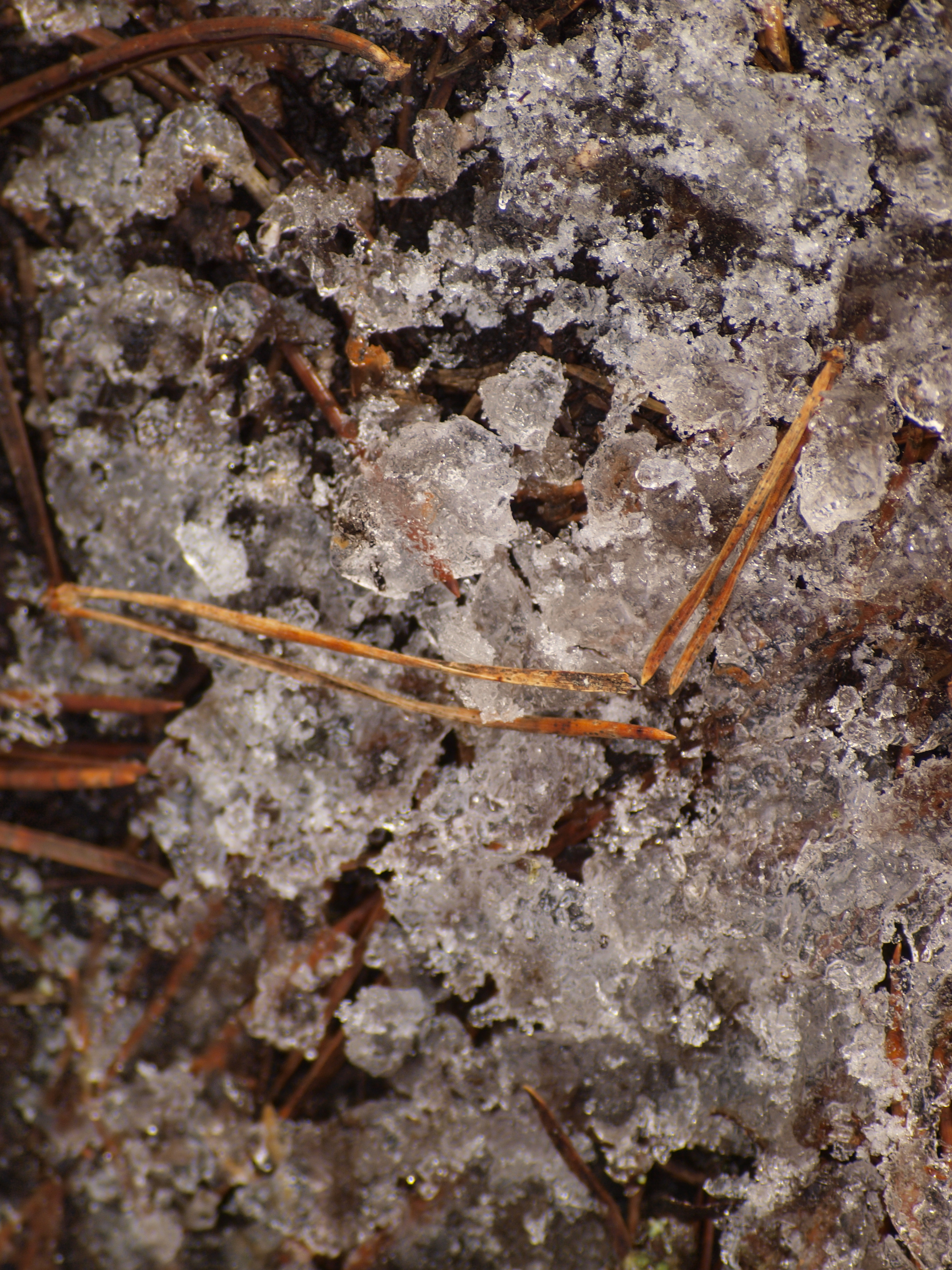 Ice texture, Cold, Freeze, Ground, Ice, HQ Photo