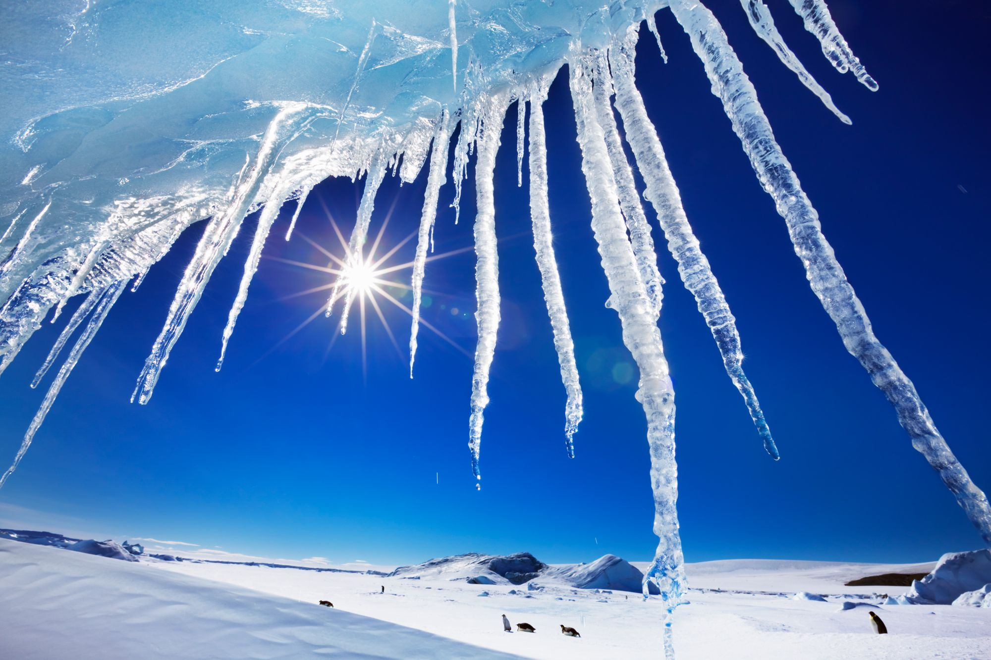 A 'Frozen' world: Amazing icy landscapes - Icicles on Snow Hill ...