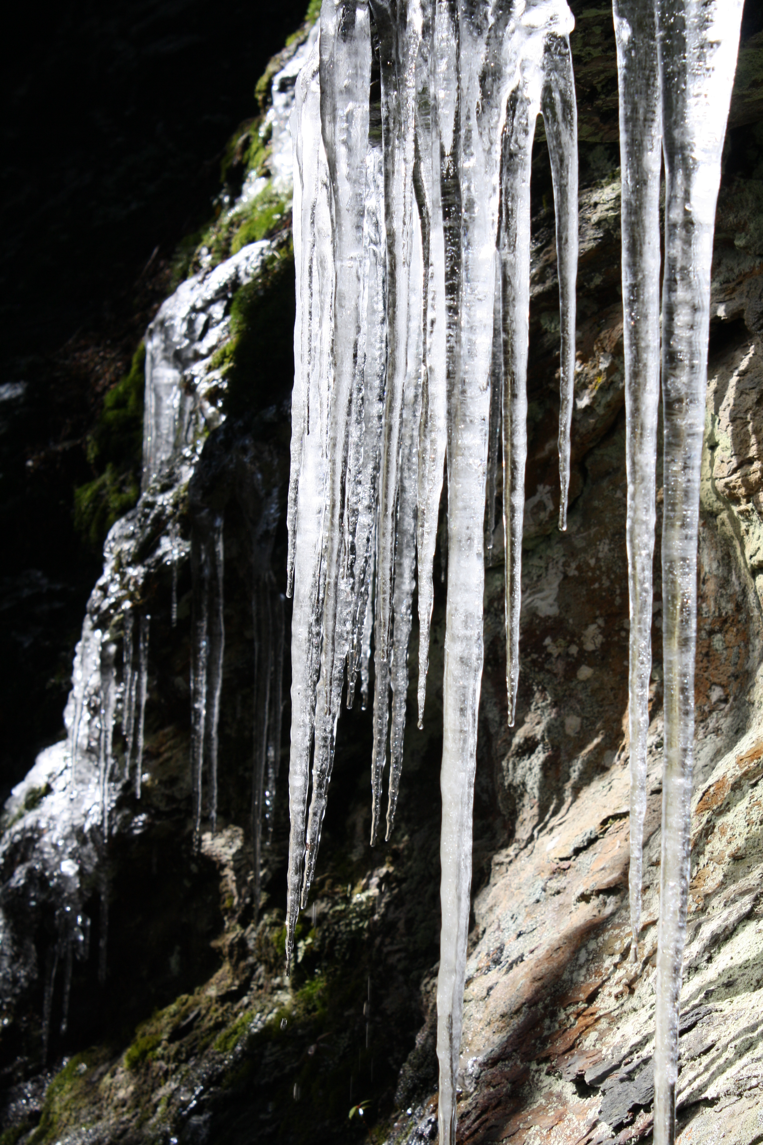 File:Row of Icicles Along the Alum Cave Trail.JPG - Wikimedia Commons