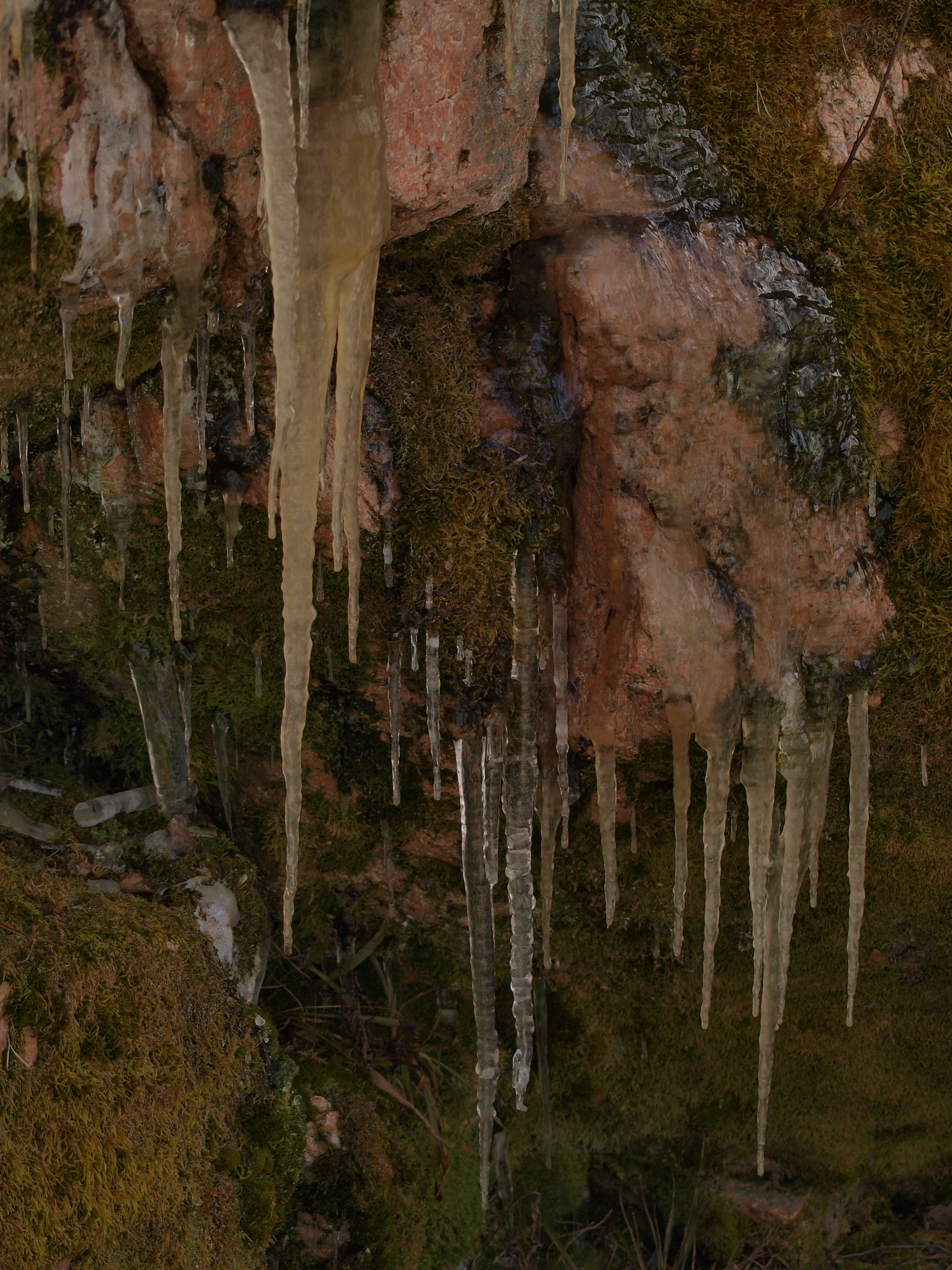 Icicles, Cold, Freeze, Ice, Water, HQ Photo