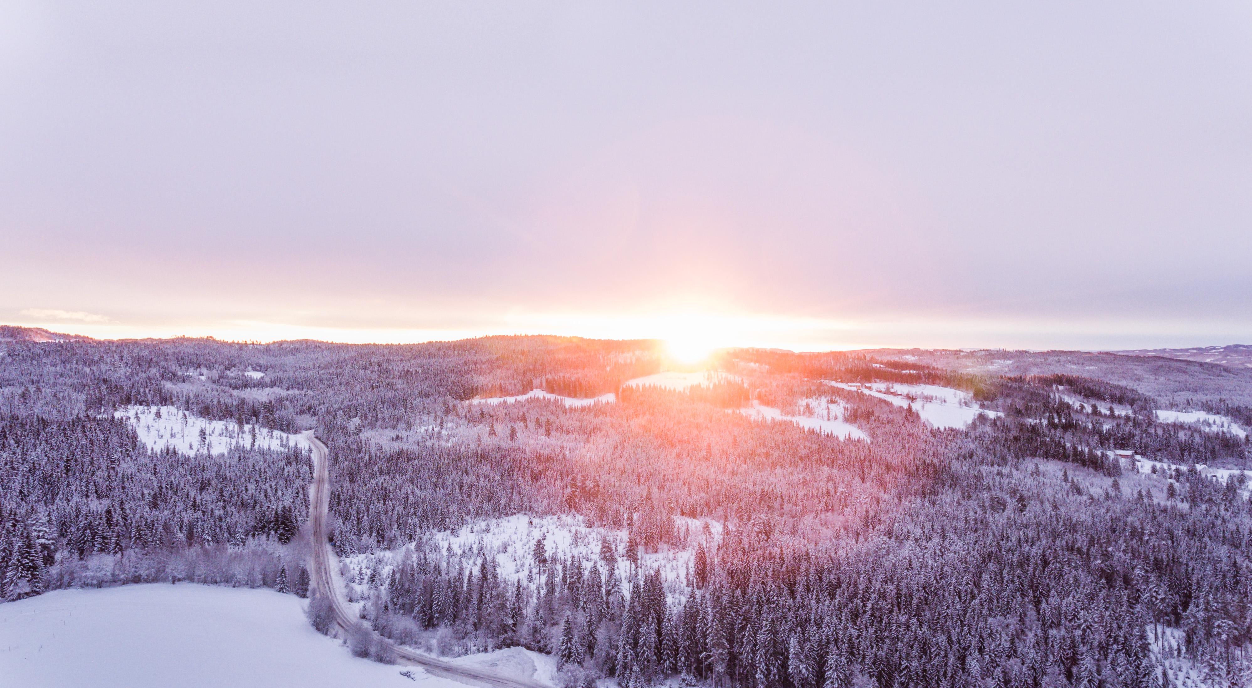 Idyllic Winter Sunrise, Scenic, Season, Scenery, Outdoor, HQ Photo