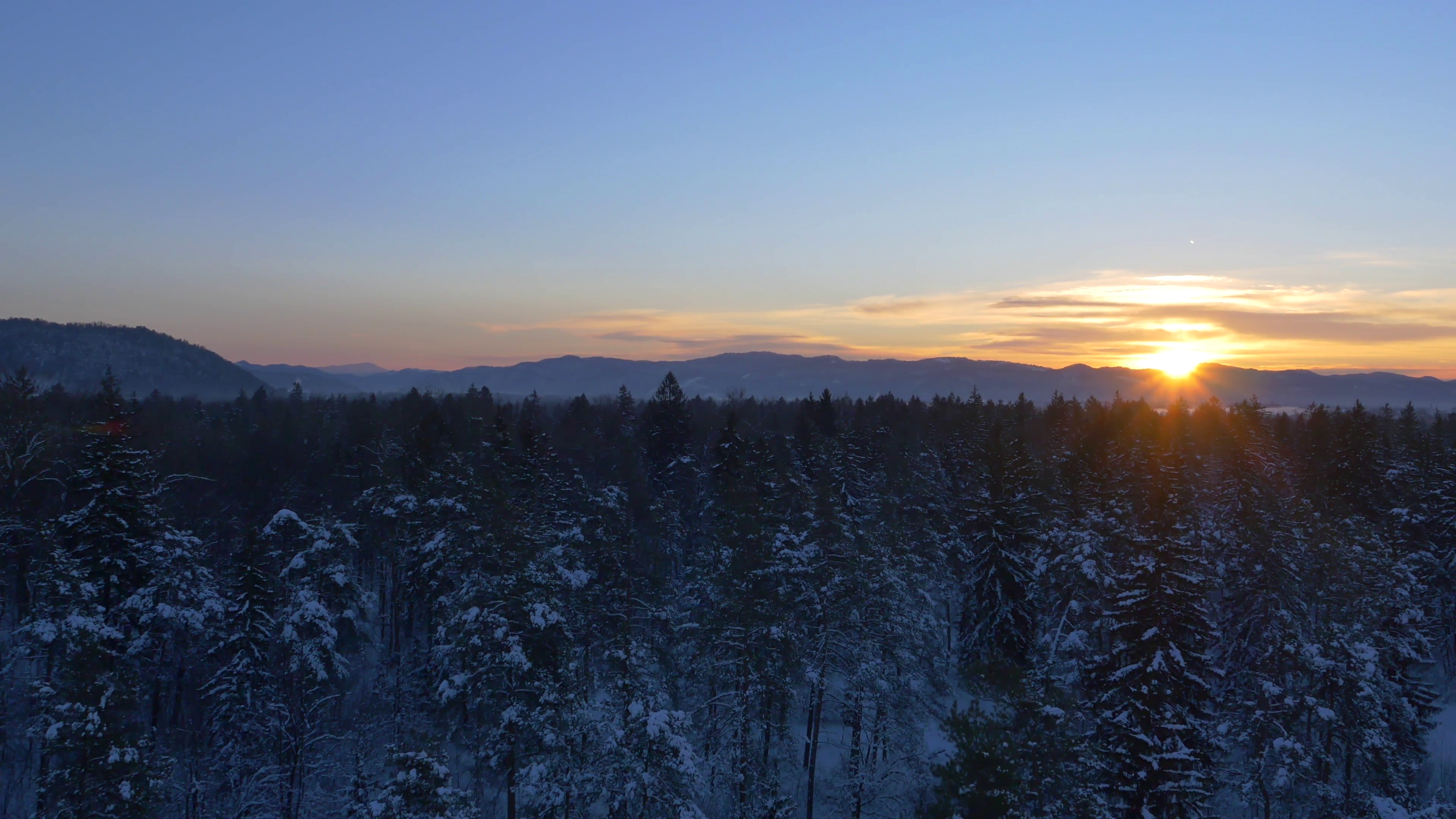 AERIAL: Snowy forest at sunrise in winter Stock Video Footage ...