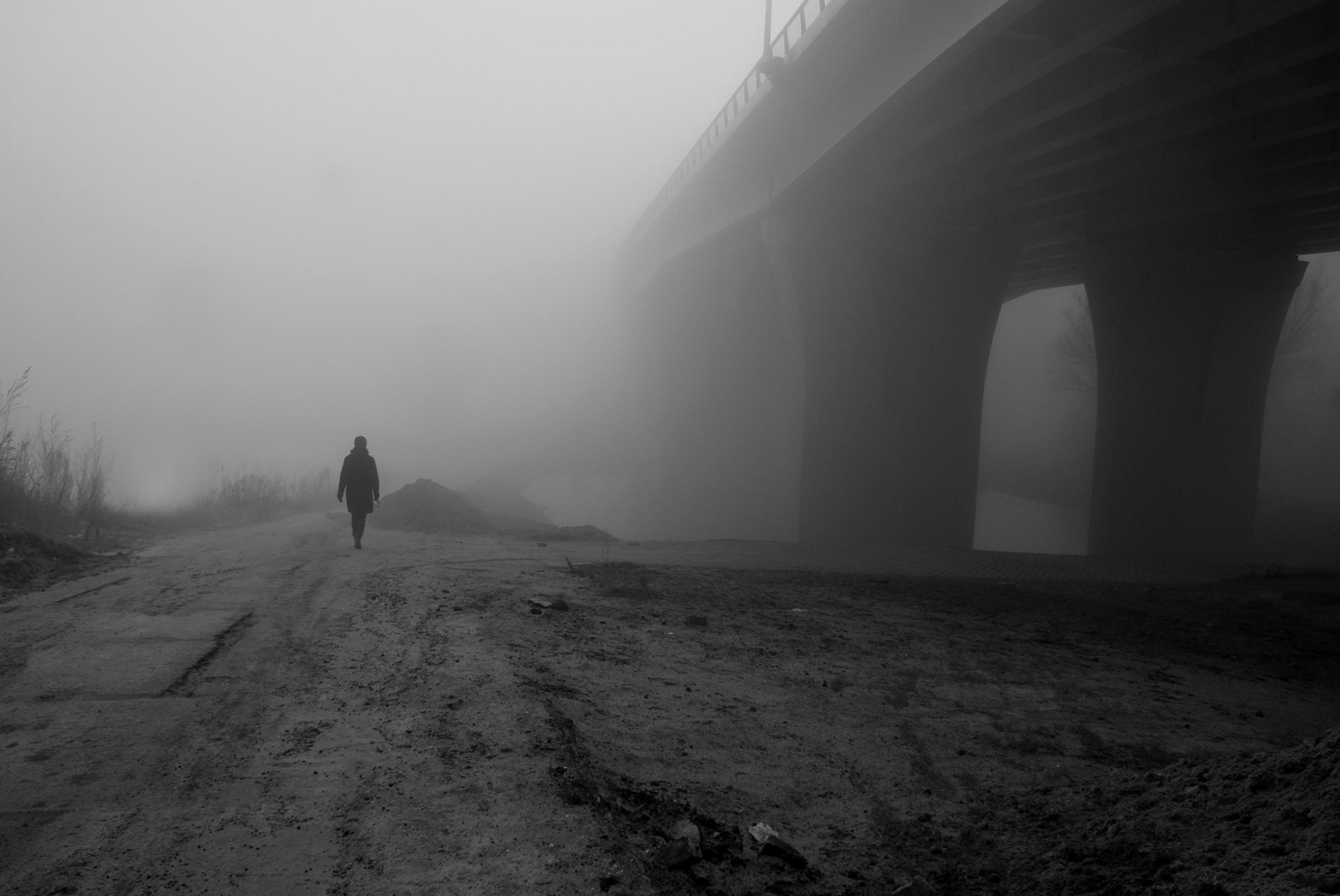 Digital Photography: Bridge in the Fog
