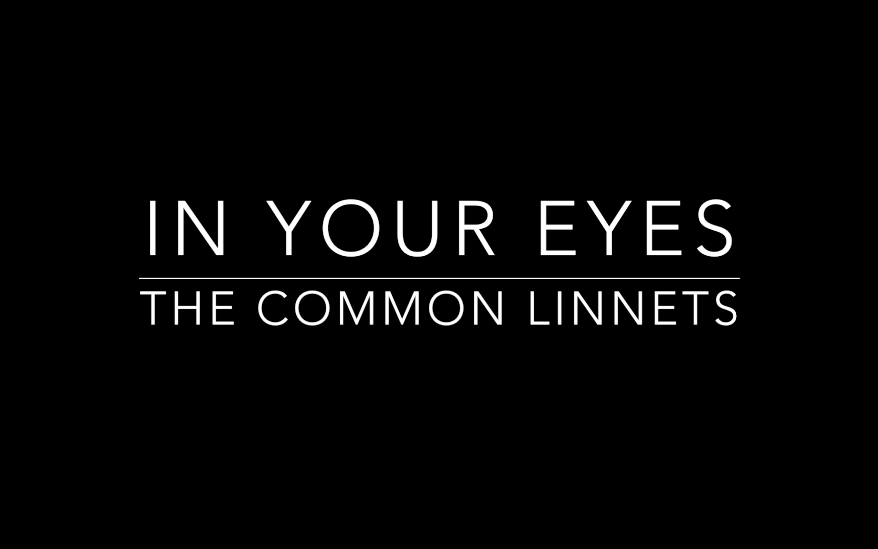 In Your Eyes - The Common Linnets Lyrics - YouTube