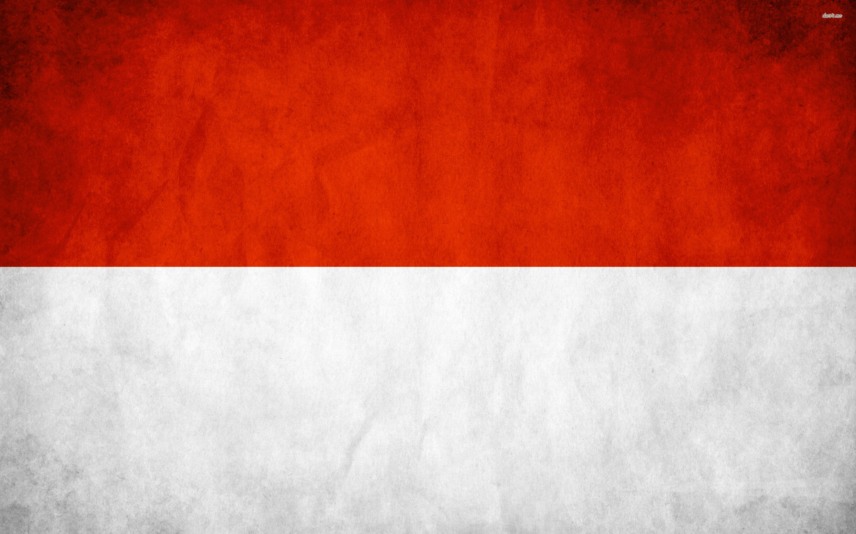 Indonesia Grunge Flag - WallDevil