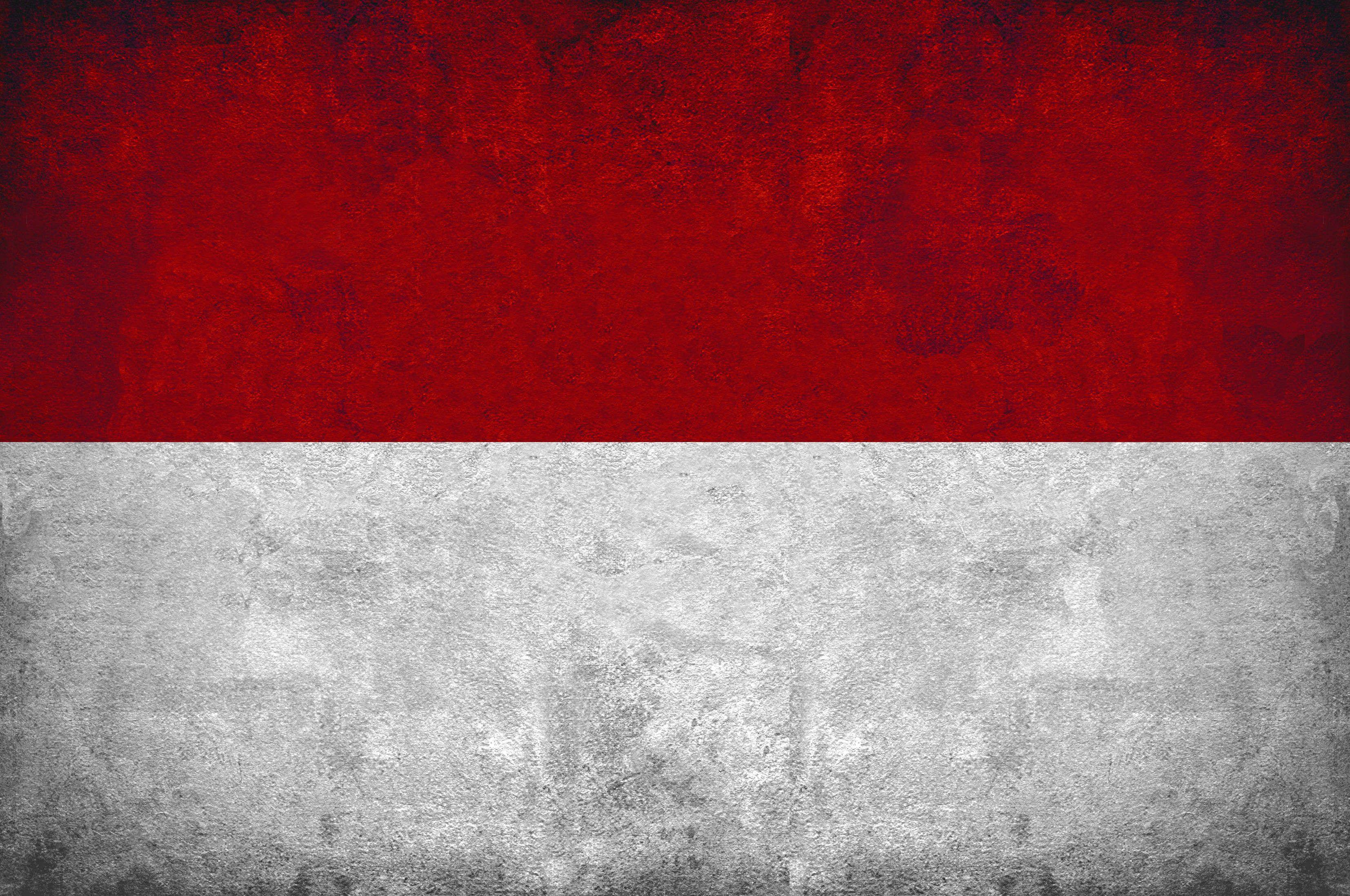 INDONESIA FLAG | ○ INDONESIA... | Pinterest | Indonesia flag and ...