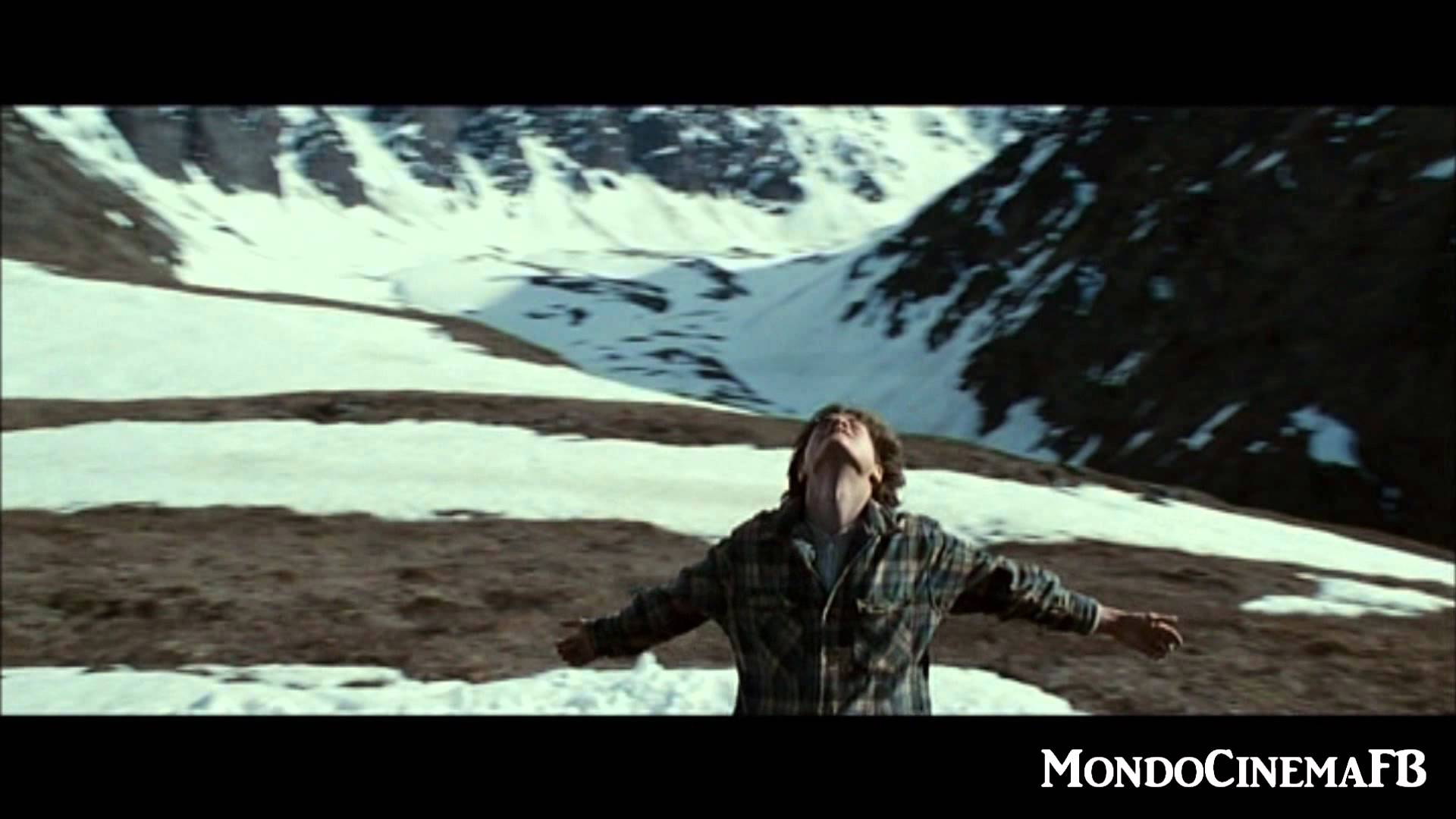 INTO THE WILD - The Wolf - YouTube