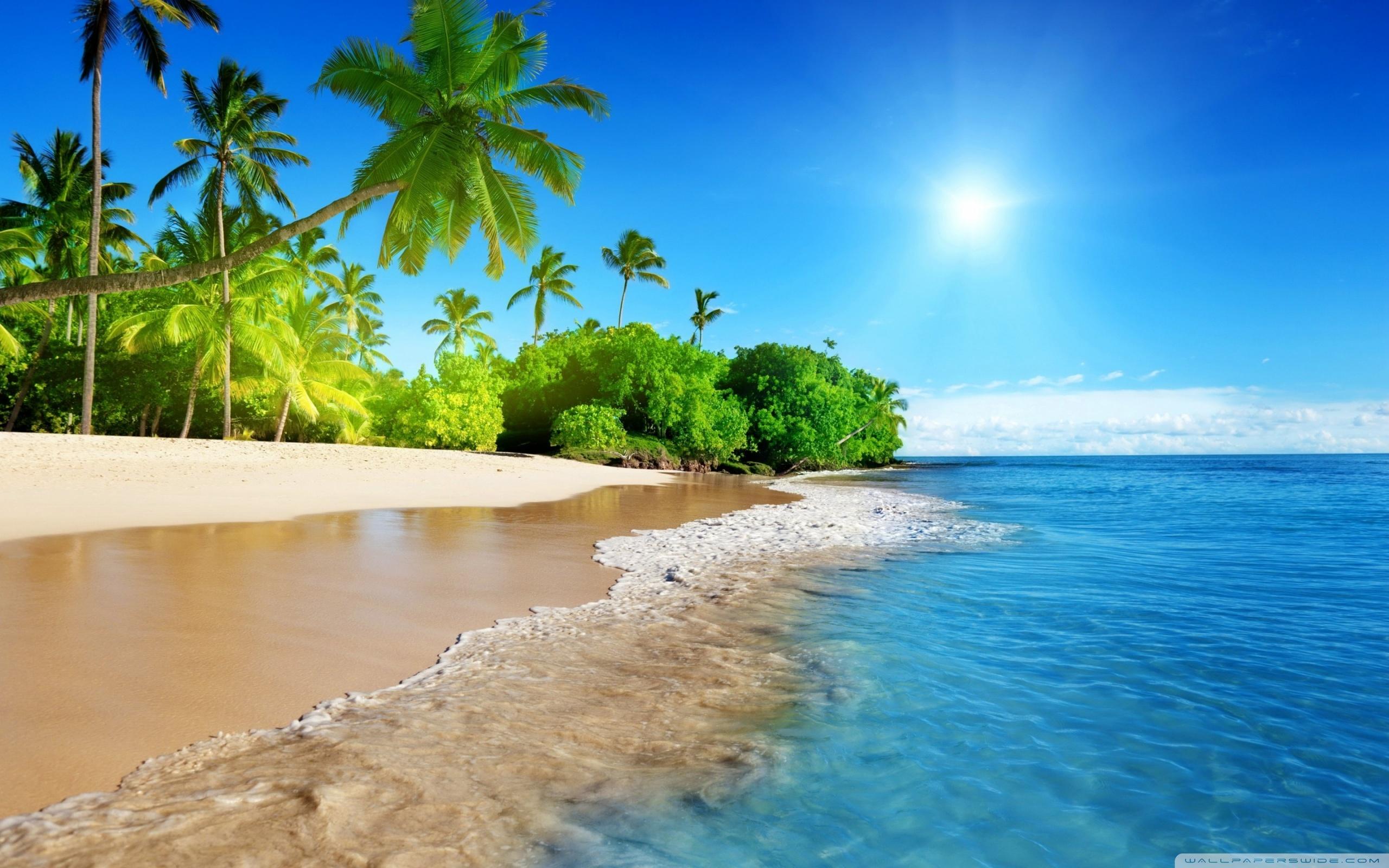 Beach, Tropical Island ❤ 4K HD Desktop Wallpaper for 4K Ultra HD TV ...