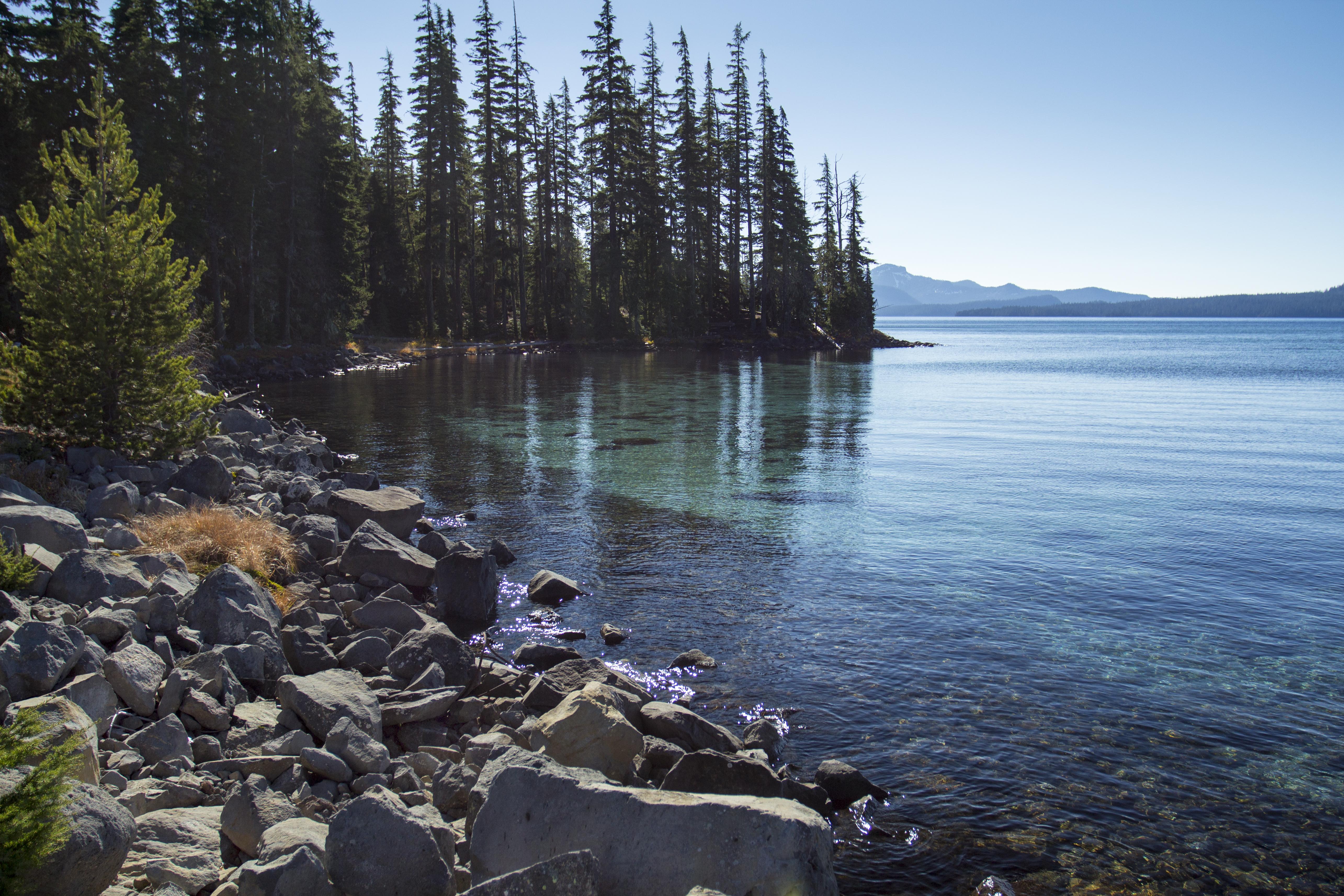 Islet Bay, Waldo Lake, Oregon, Aqua, Bay, Blue, Calm, HQ Photo