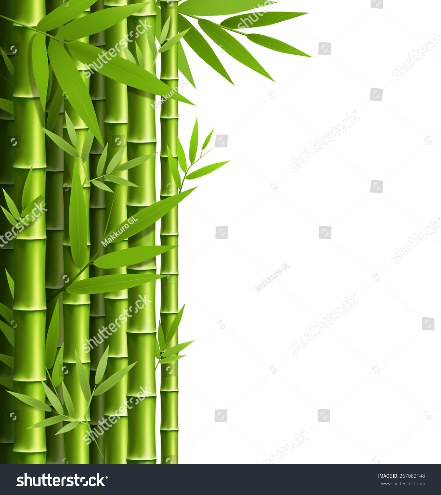 Green Bamboo Grove Isolated On White Stock Vector 267082148 ...