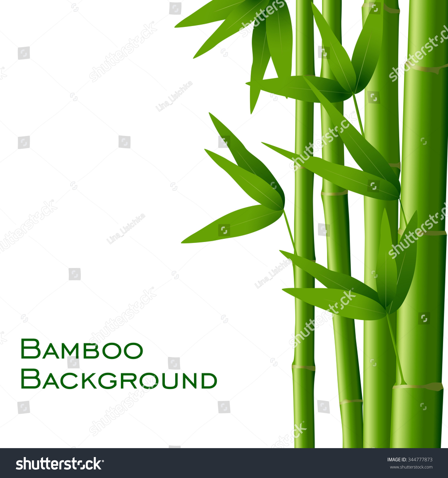 Bamboo Isolated On White Background Vector Stock Vector 344777873 ...