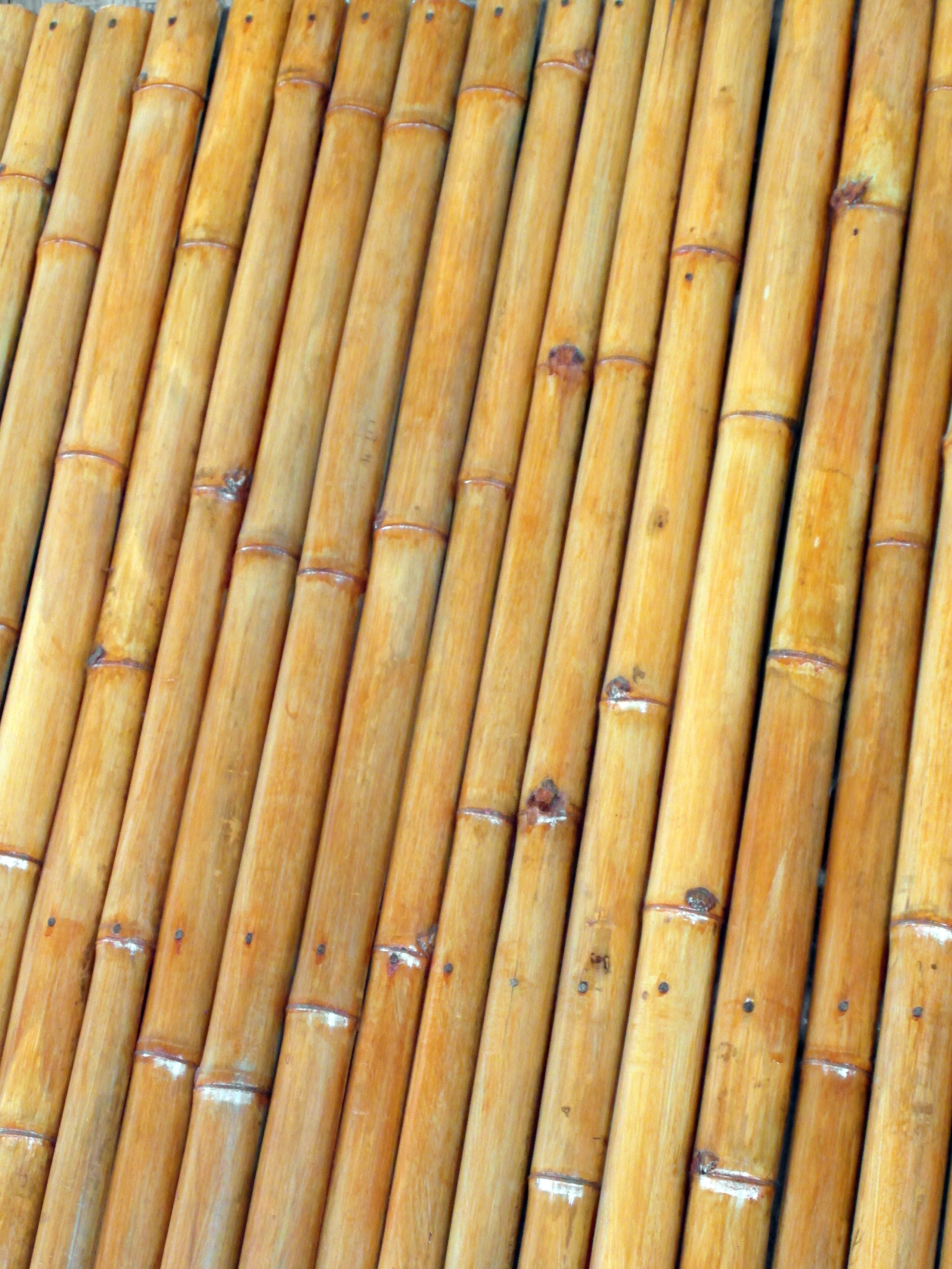 Isolated Bamboo Background, Asia, Real, Wooden, Wall, HQ Photo