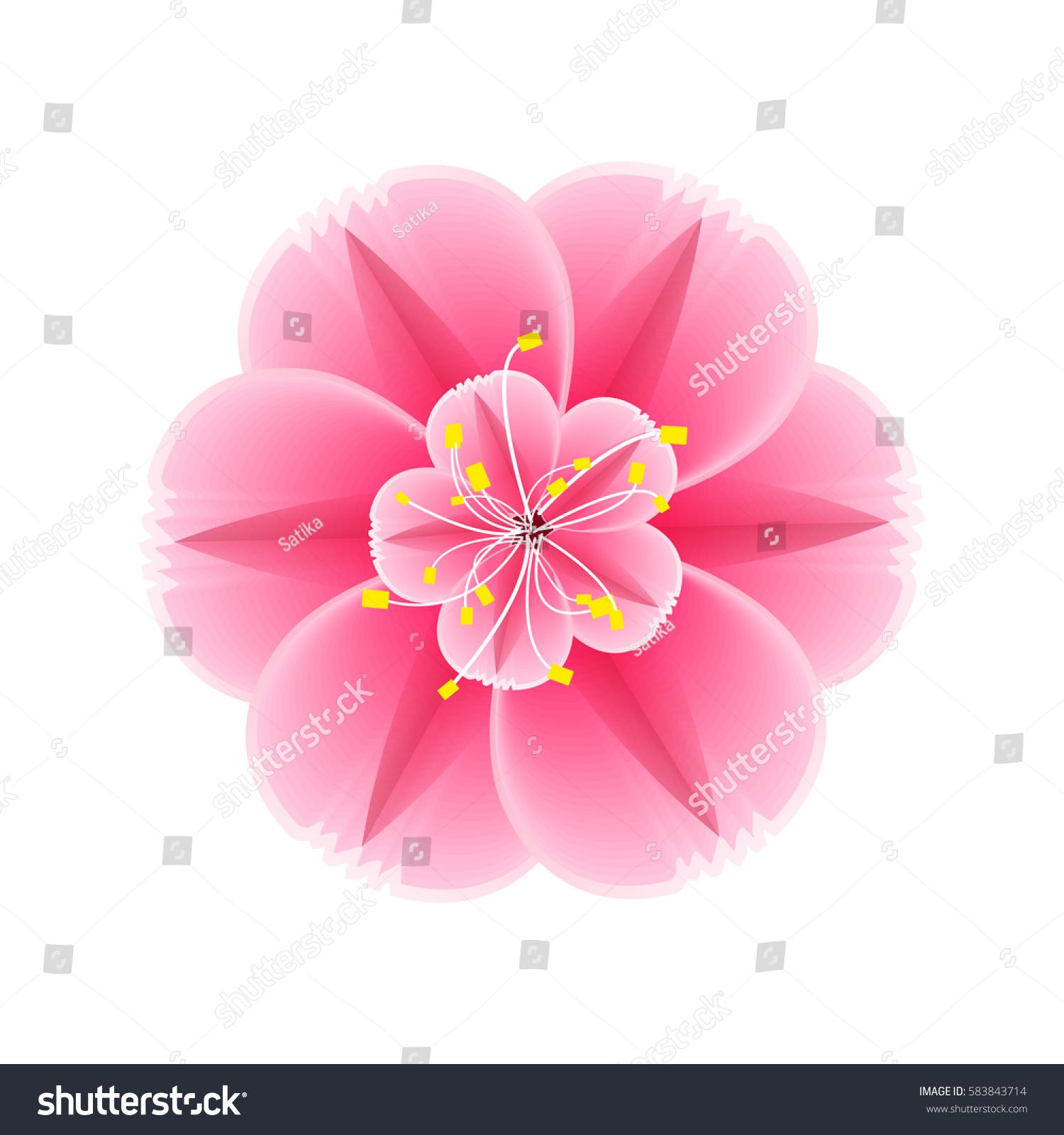 Isolated Flower Sakura Cartoon Pink White Stock Vector 583843714 ...
