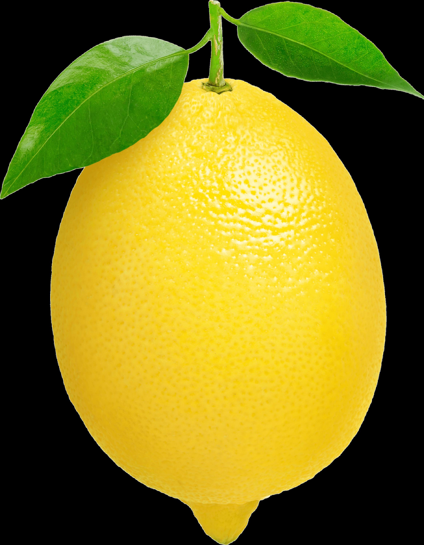 Single Lemon transparent PNG - StickPNG