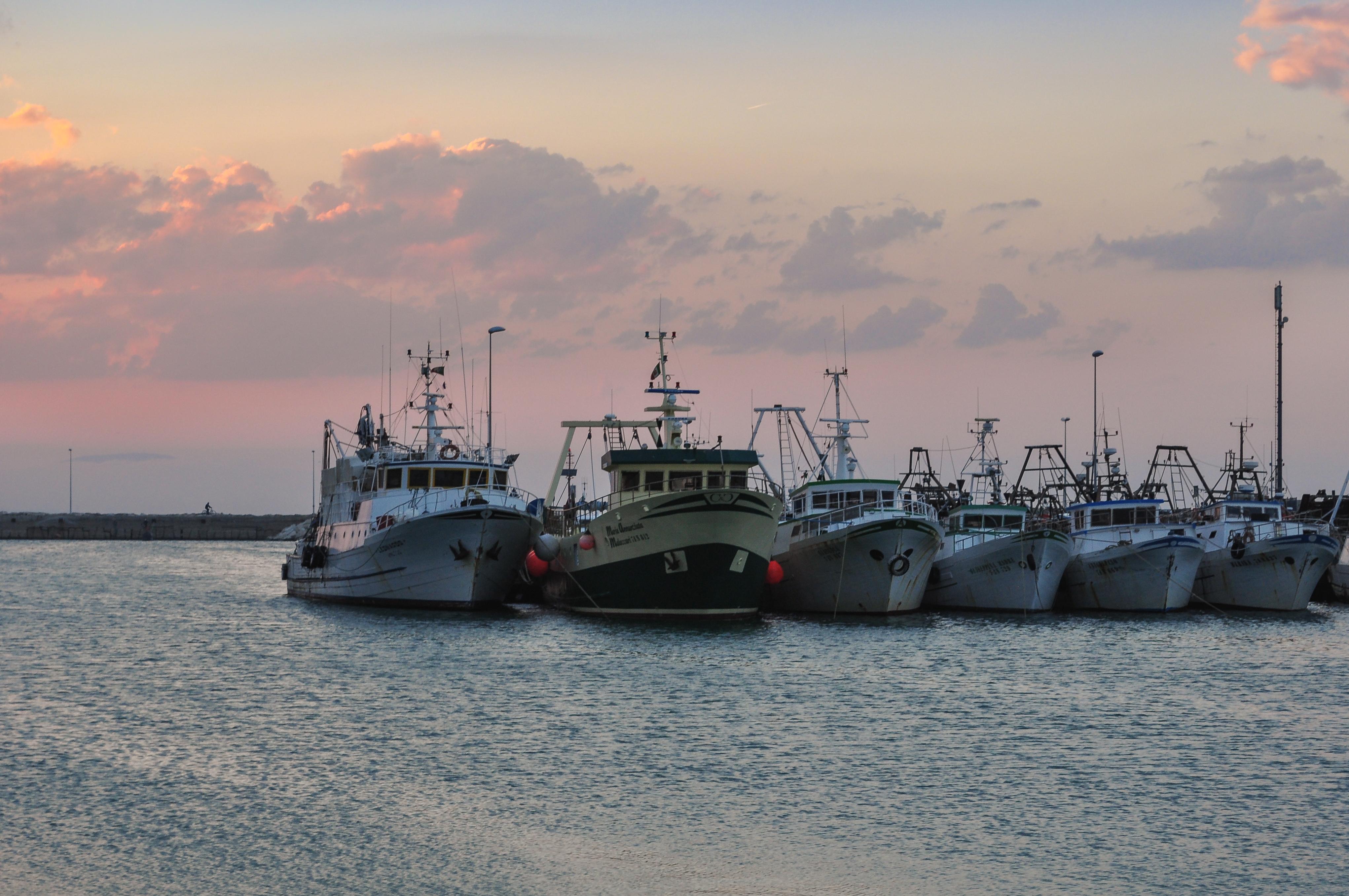 Italian Harbour, Boats, Harbour, Italian, Italy, HQ Photo
