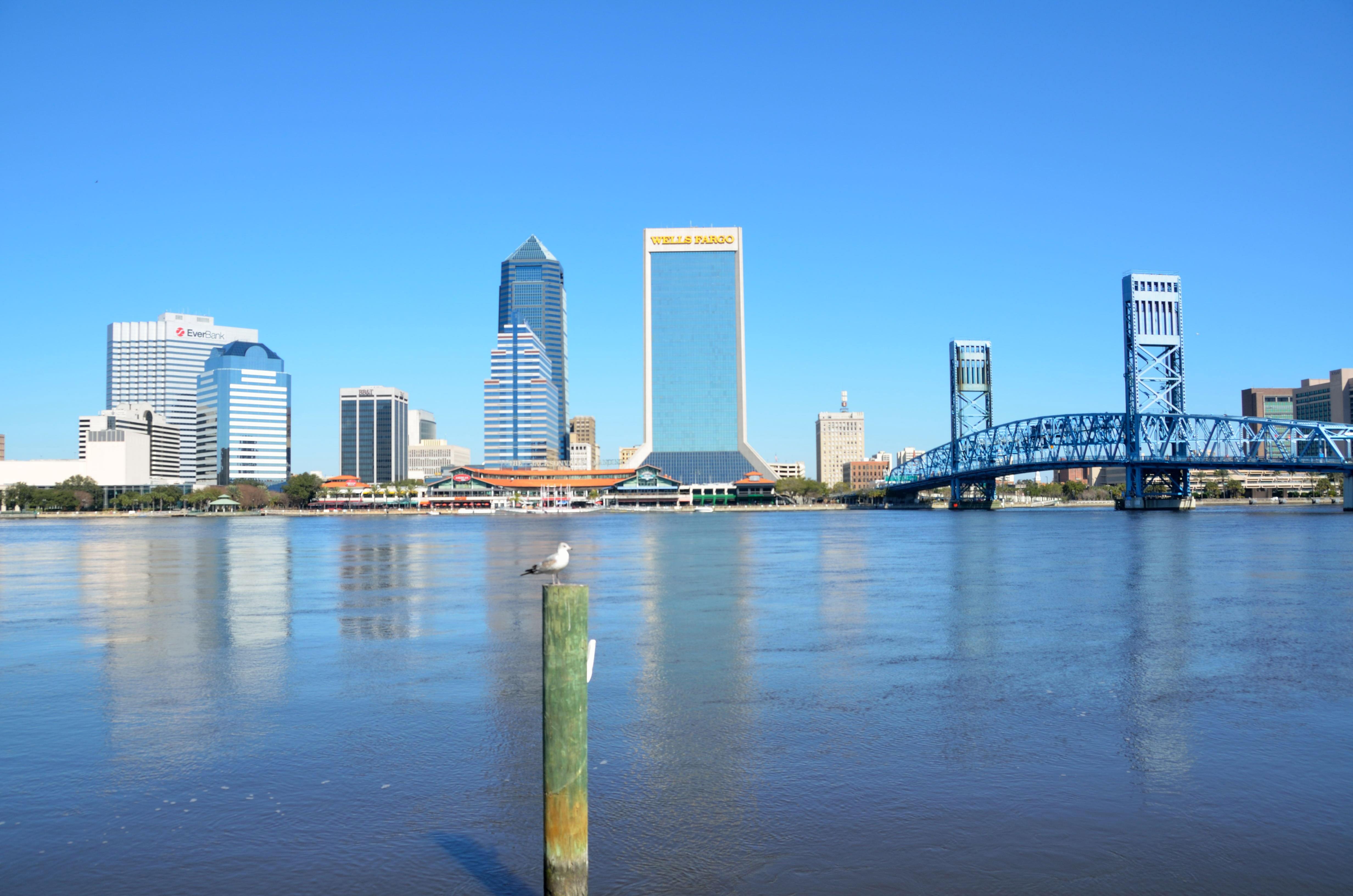 Skyline of Jacksonville, Florida image - Free stock photo - Public ...