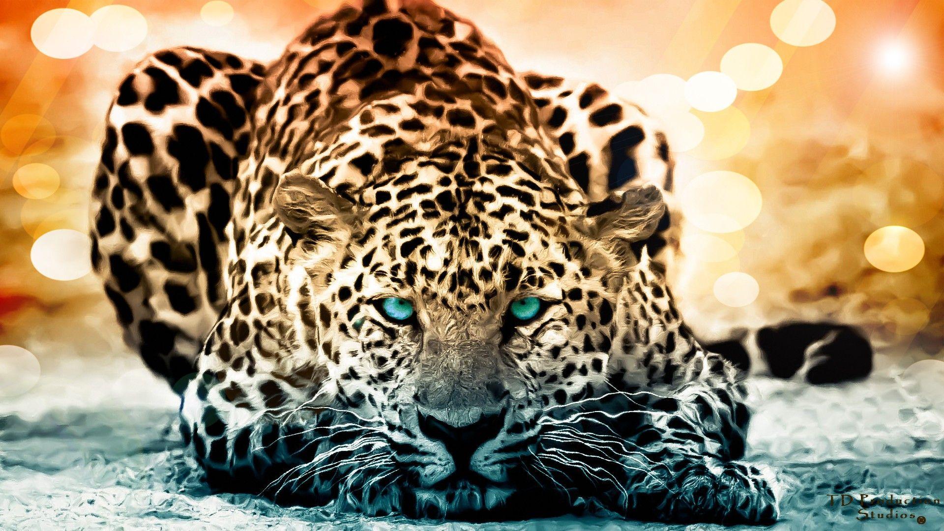 jaguar animal - Google Search | A11 Big Cats - Best Picture ...
