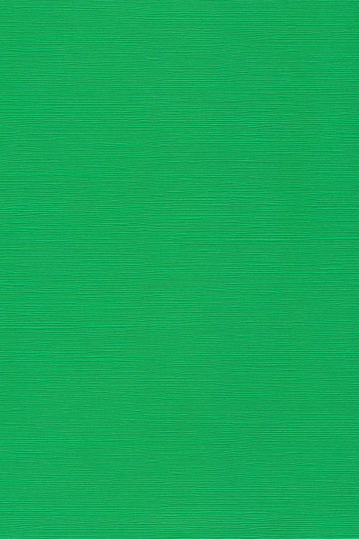 Japanese linen paper - green photo