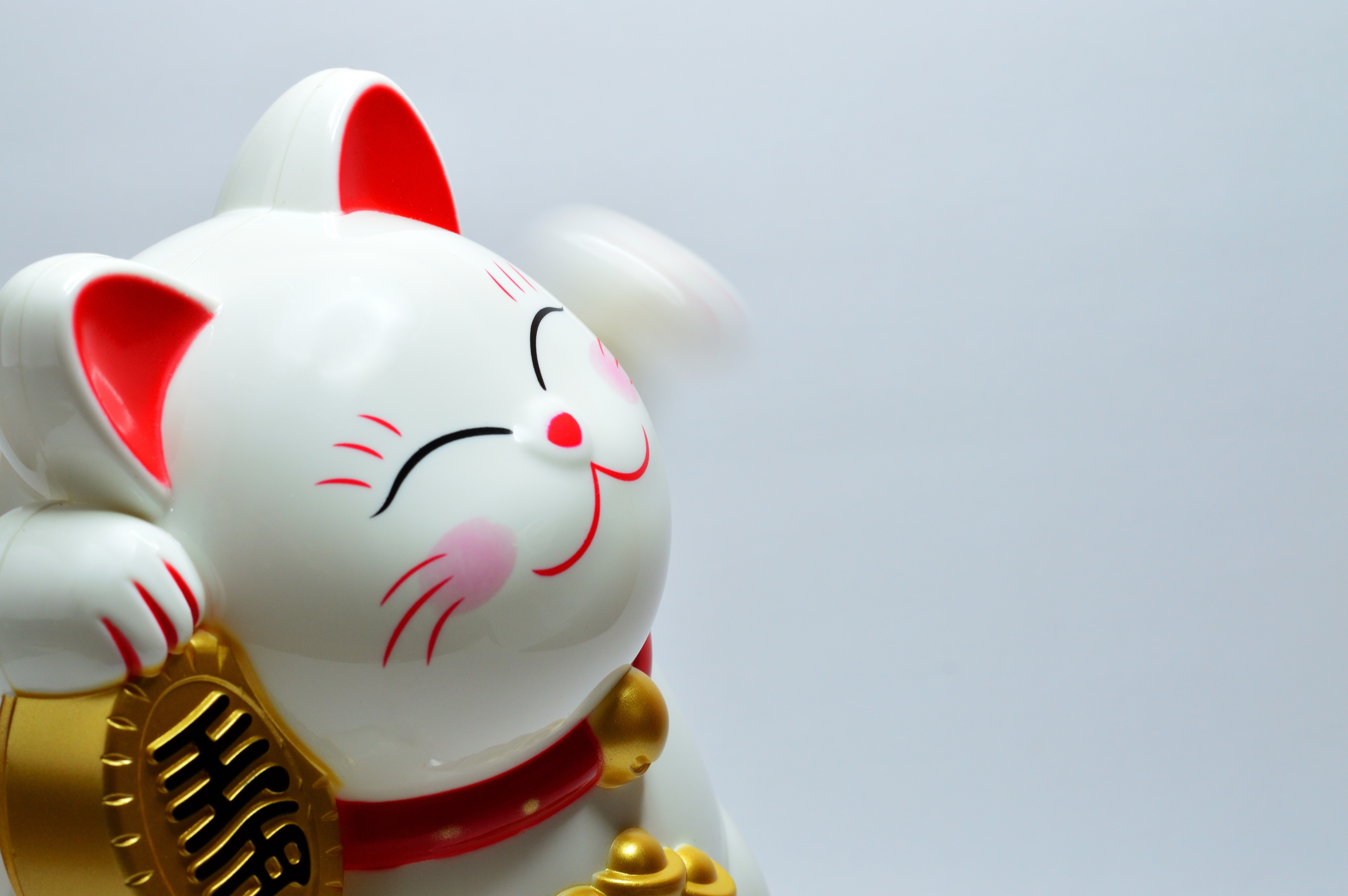 Japanese lucky coin cat photo