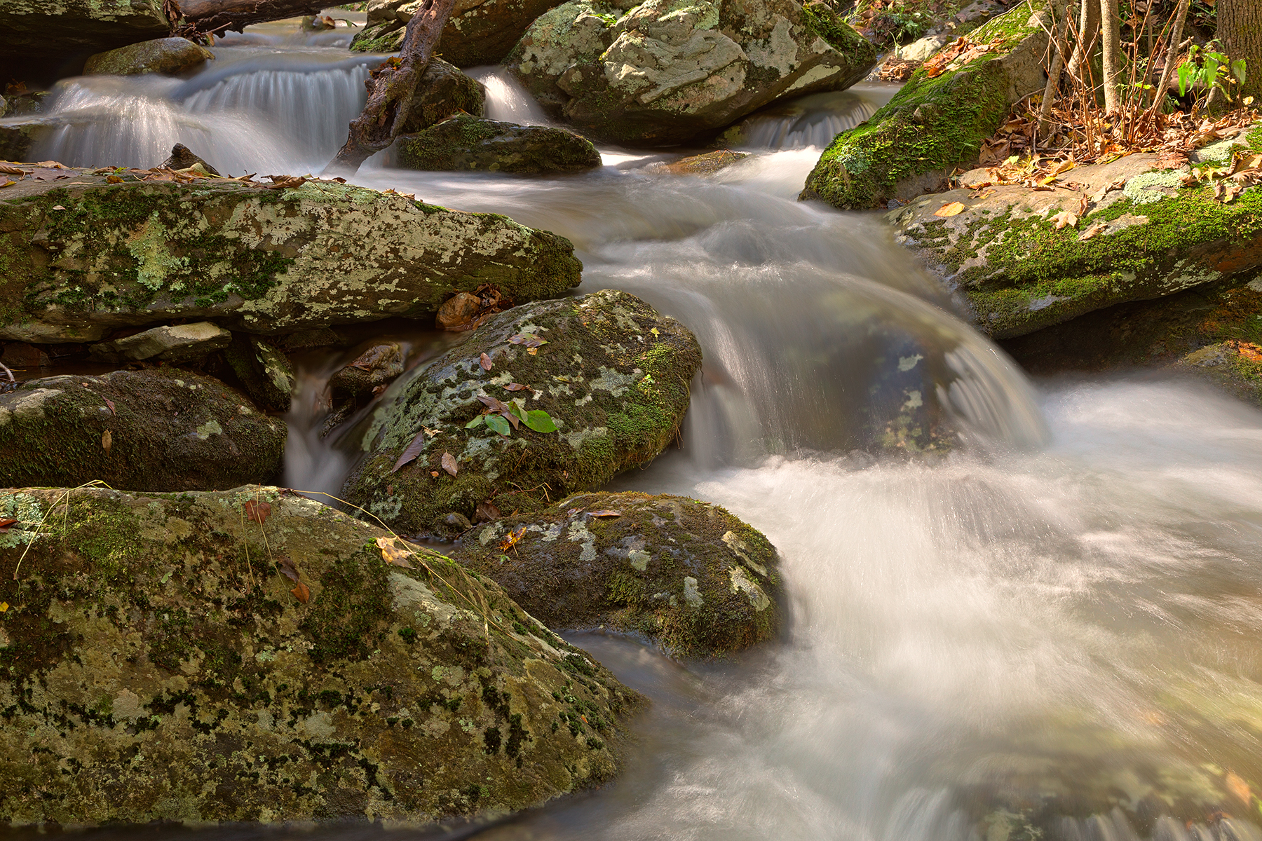 Jones Run Cascading Stream - HDR, America, Quiet, Shade, Serenity, HQ Photo