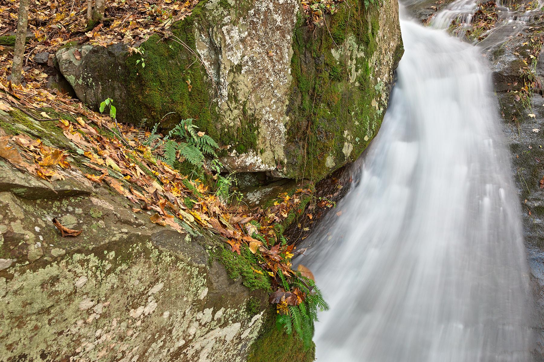 Jones Run Highway Stream - HDR, America, Outdoors, Scenic, Scenery, HQ Photo