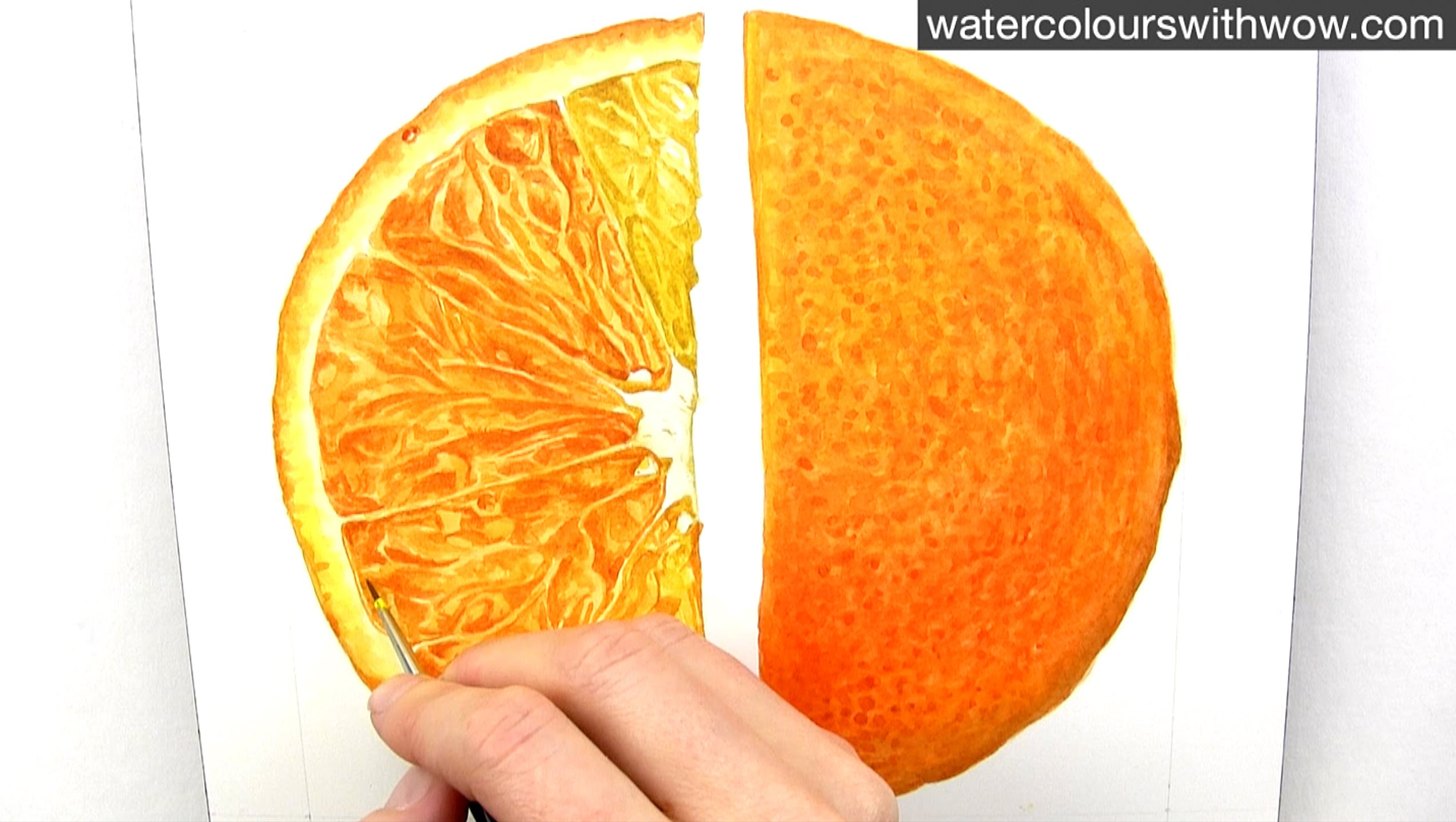 How to paint a realistic juicy orange slice in watercolour with Anna ...