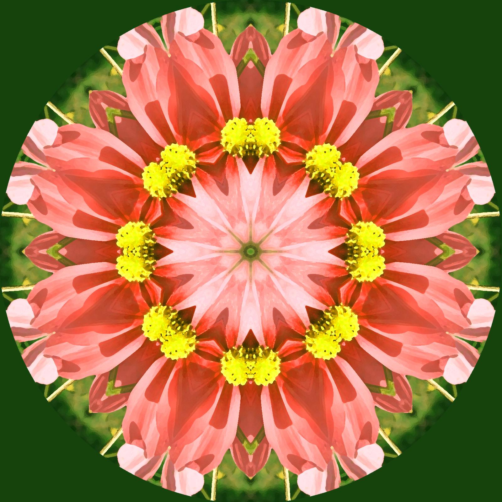 kaleidoscope flower mandala, Ornament, Graphic, Kaleidoscope, Lace, HQ Photo