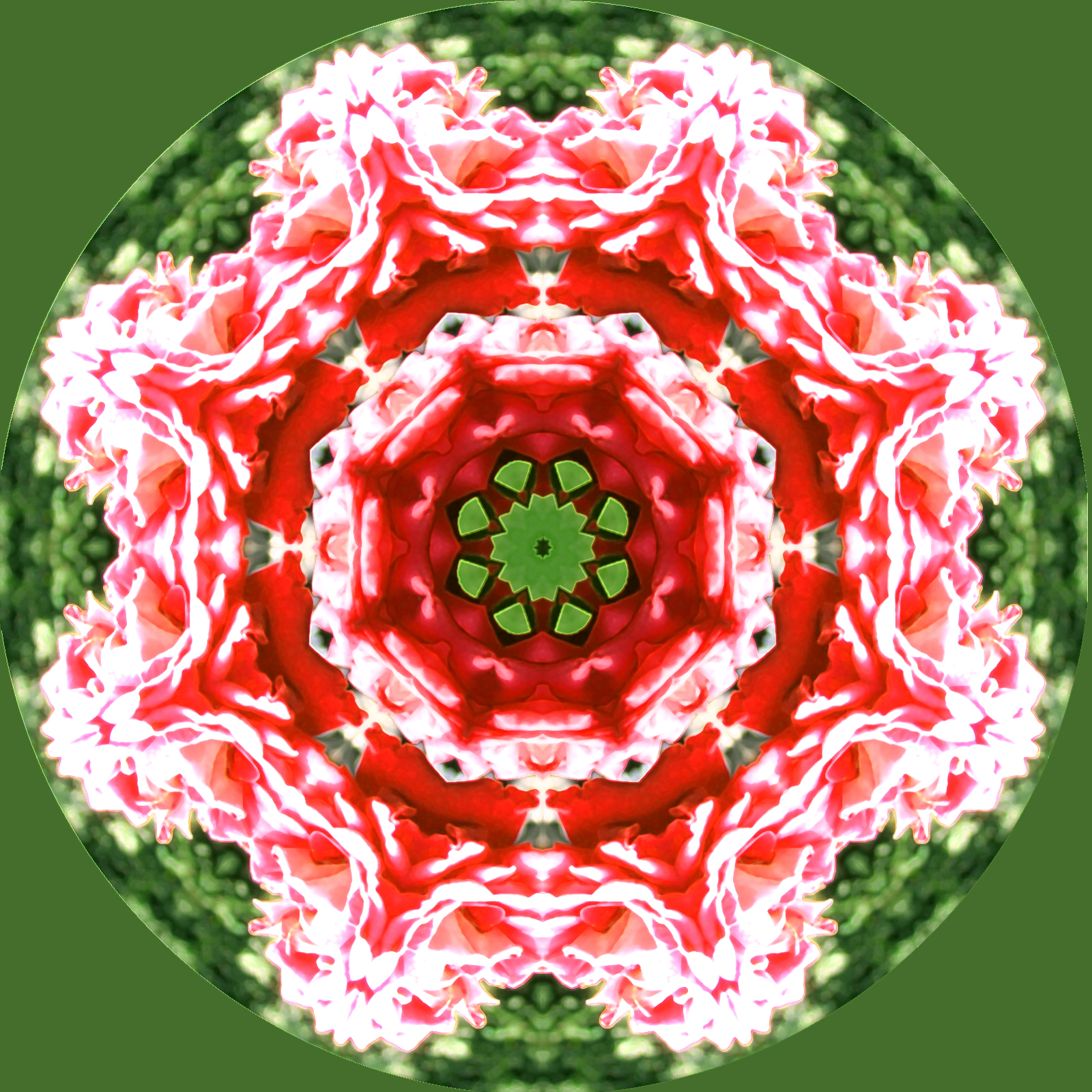 kaleidoscope flower mandala, Ornament, Graphic, Kaleidoscope, Lace, HQ Photo