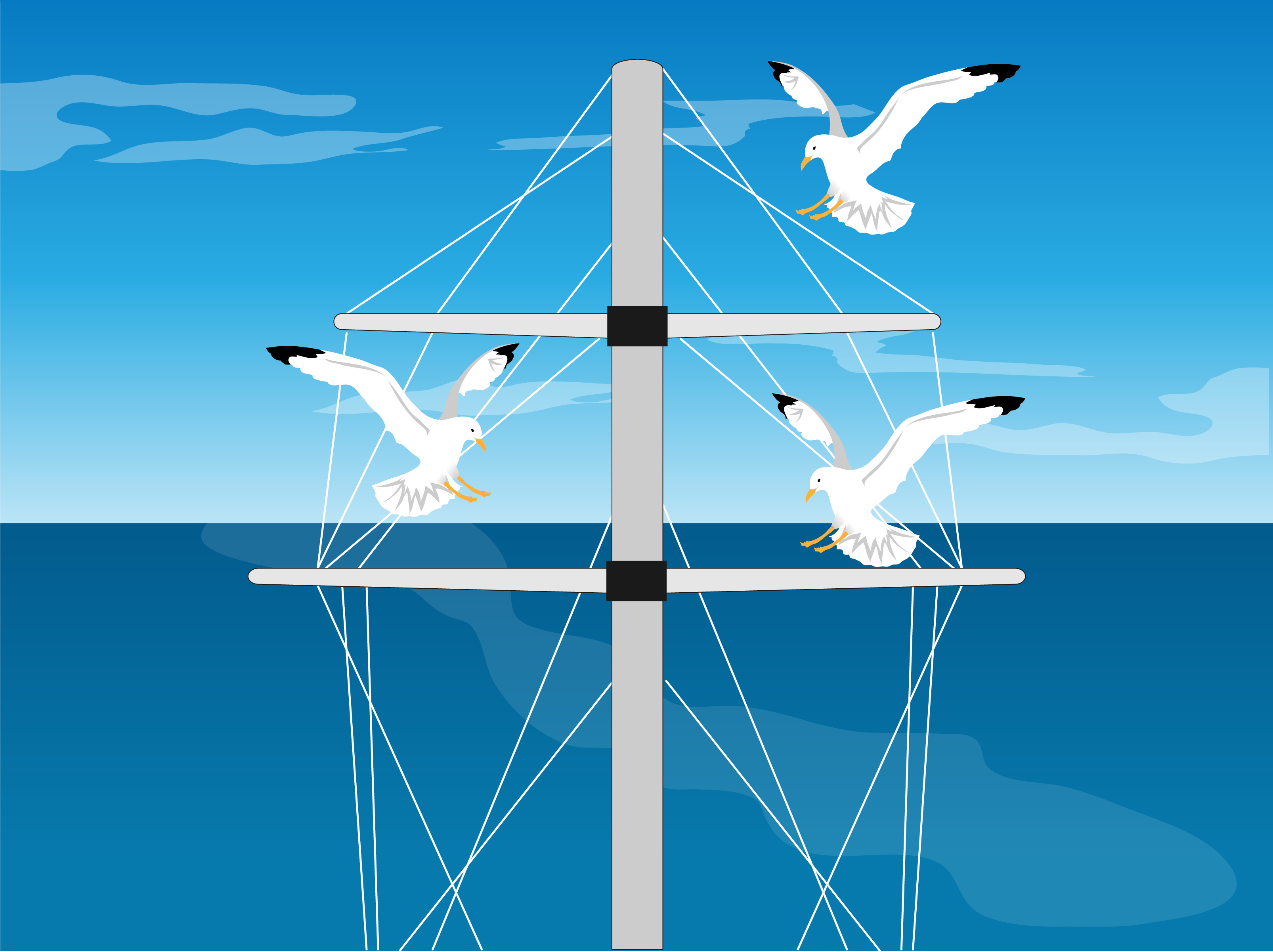 How to Keep Pest Birds off Your Boat: 3 Steps (with Pictures)